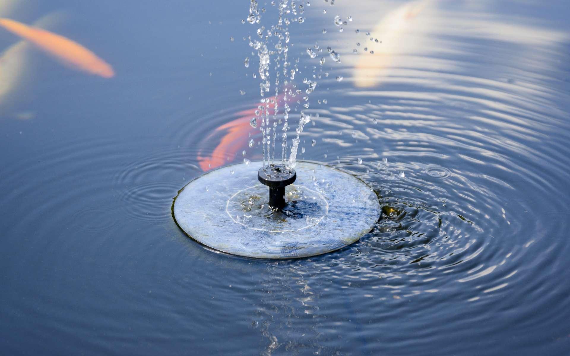 Pour un fonctionnement optimal de votre fontaine solaire, bien orienter le panneau photovoltaïque vers le sud © lapis2380, Adobe Stock