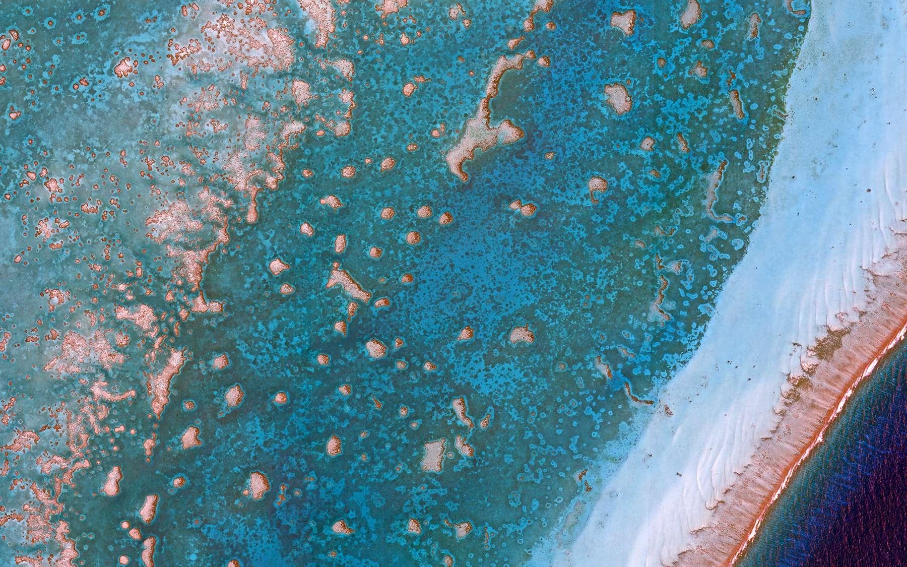 Les récifs coralliens vont être surveillés par satellite. Ici, le récif corallien du Belize. © Planet Lab 2018