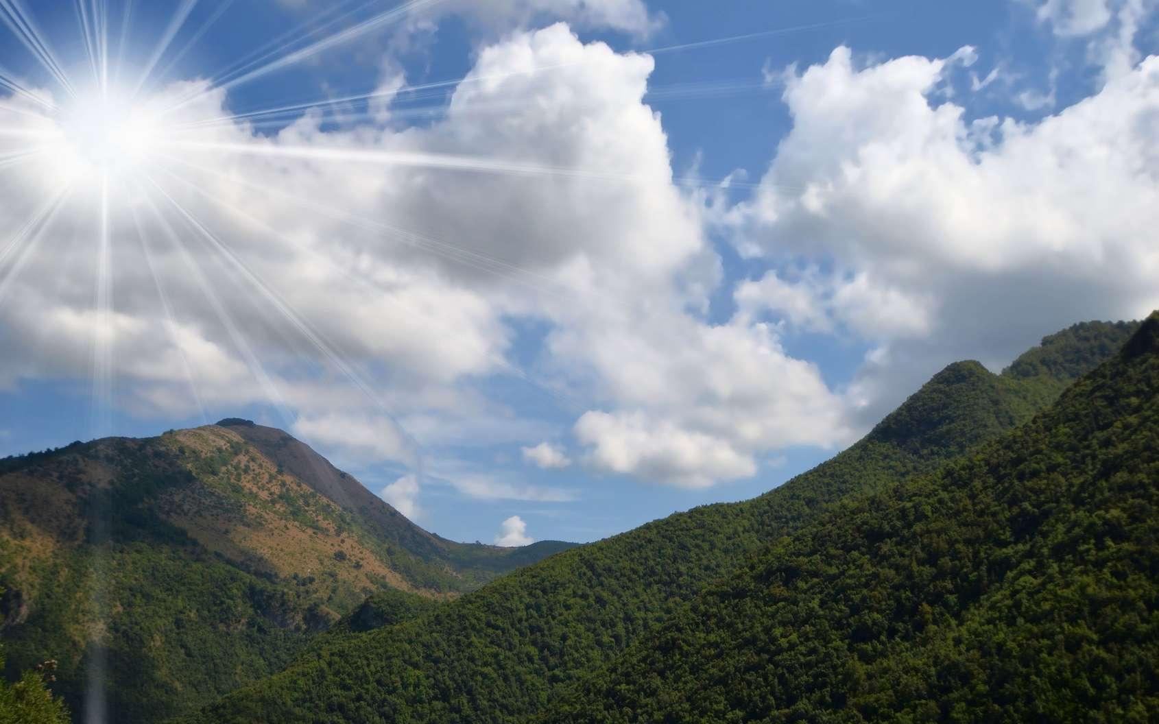 Le parc national du Pollino (Italie) abrite le plus vieil arbre européen. © lisa_L, Fotolia