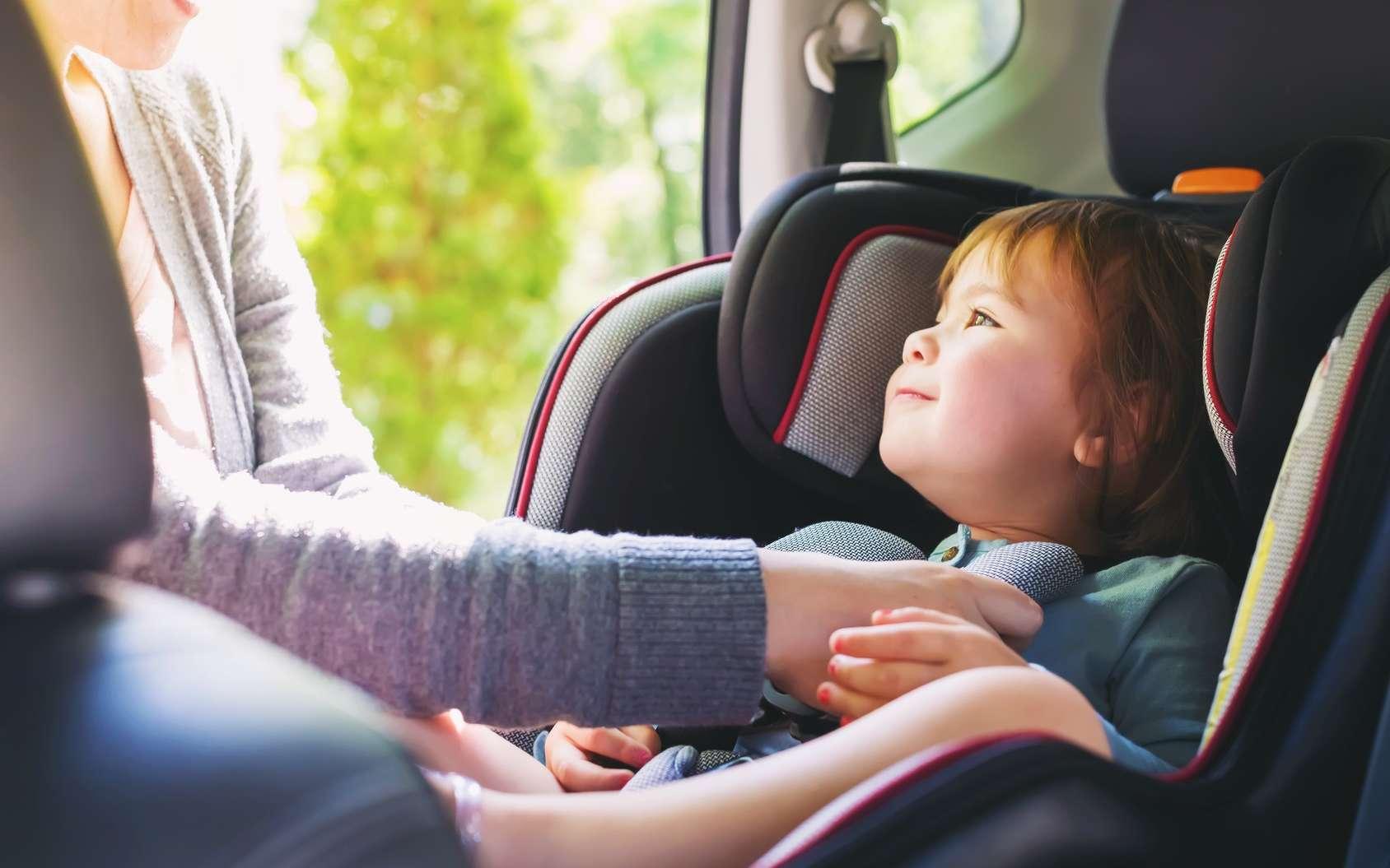En voiture, tout le monde doit être attaché ! © Tierney, Fotolia