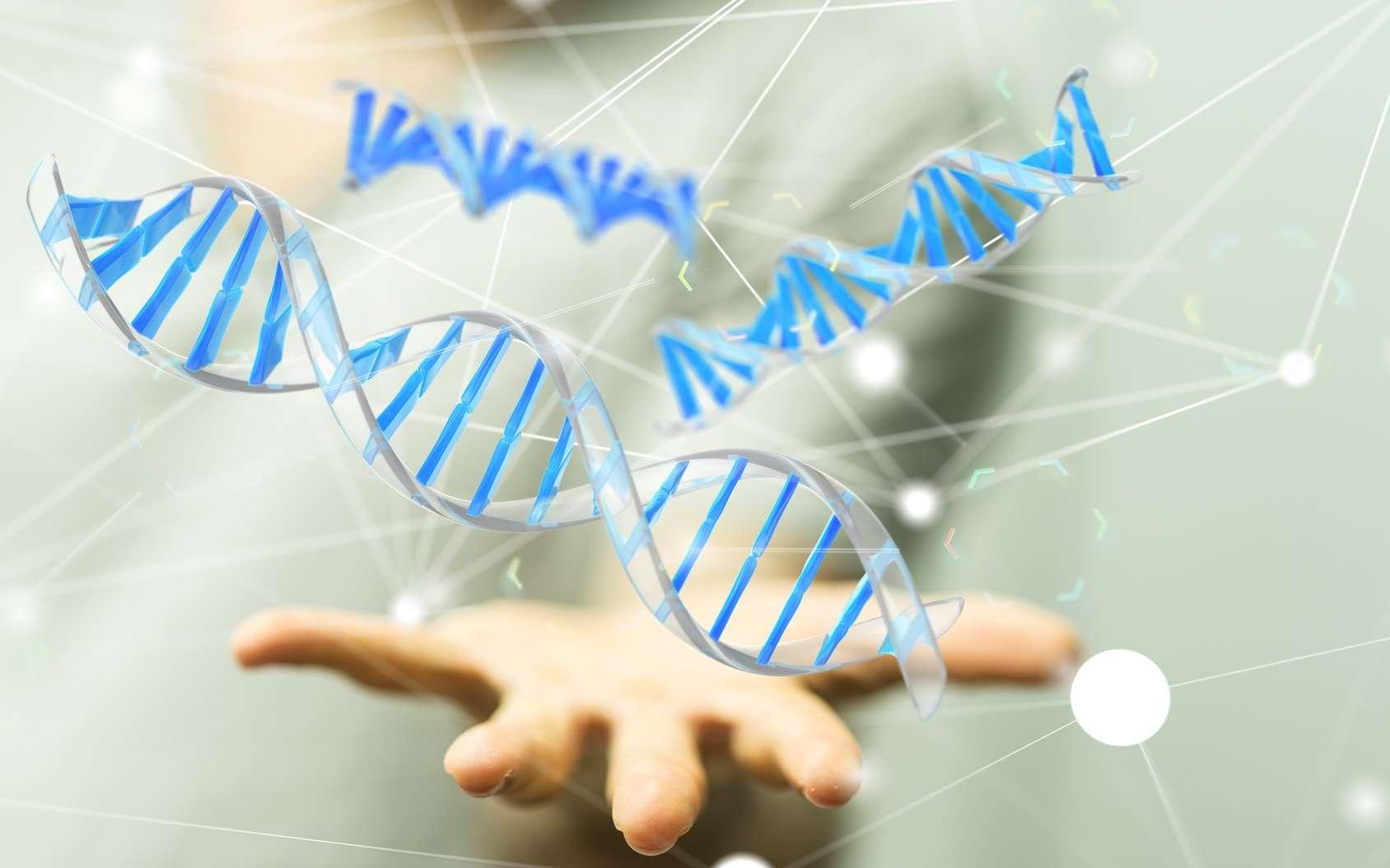 Le traitement de thérapie génique employé modifie des cellules immunitaires du patient pour que celles-ci luttent contre la leucémie. © vege, Fotolia