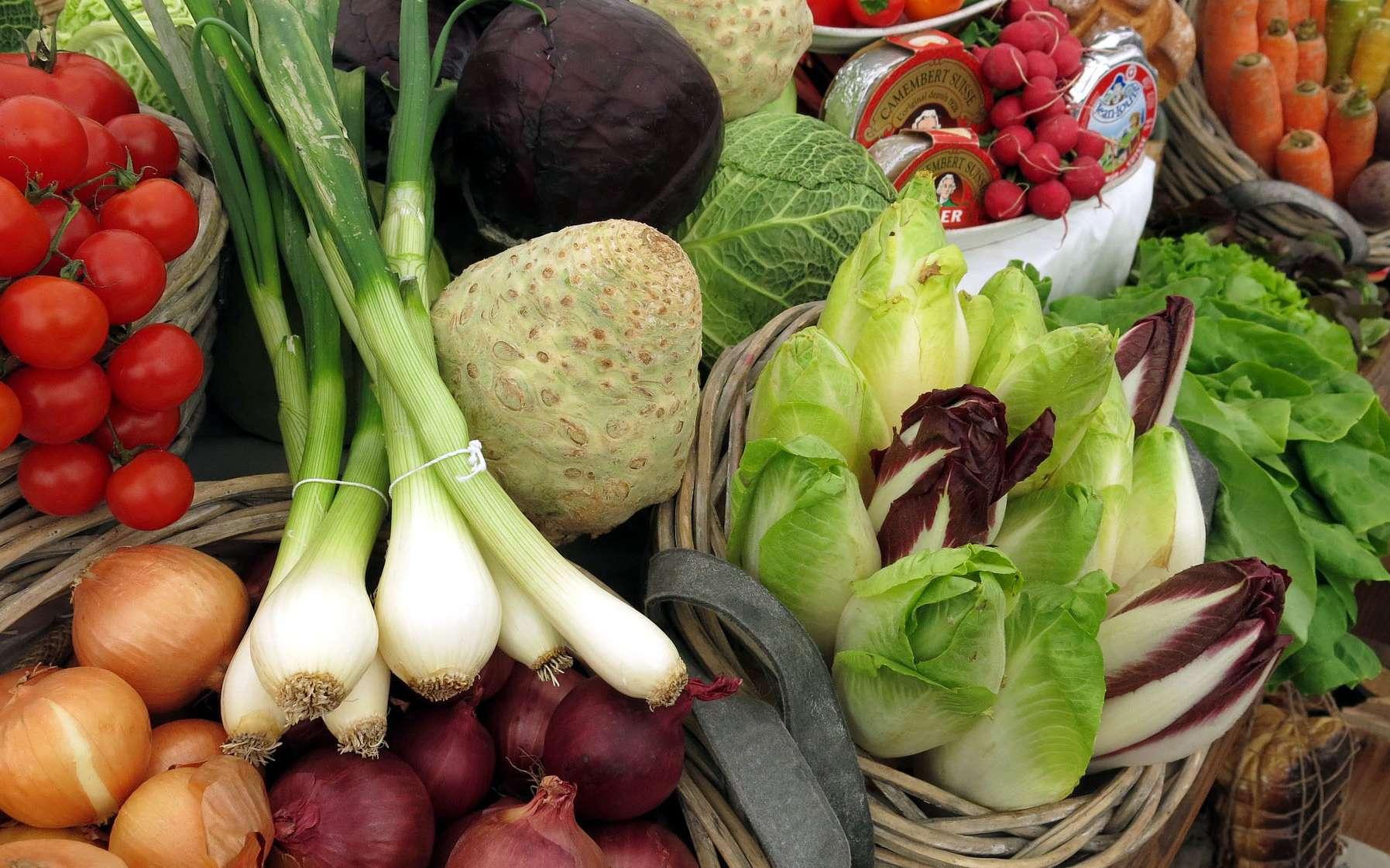 Une alimentation variée et saine permet d'éviter bon nombre de maladies. Certains aliments fournissent l'énergie et les molécules indispensables à notre organisme quand d'autres prennent soin de notre flore intestinale.© B1 fotos, Pixabay, DP