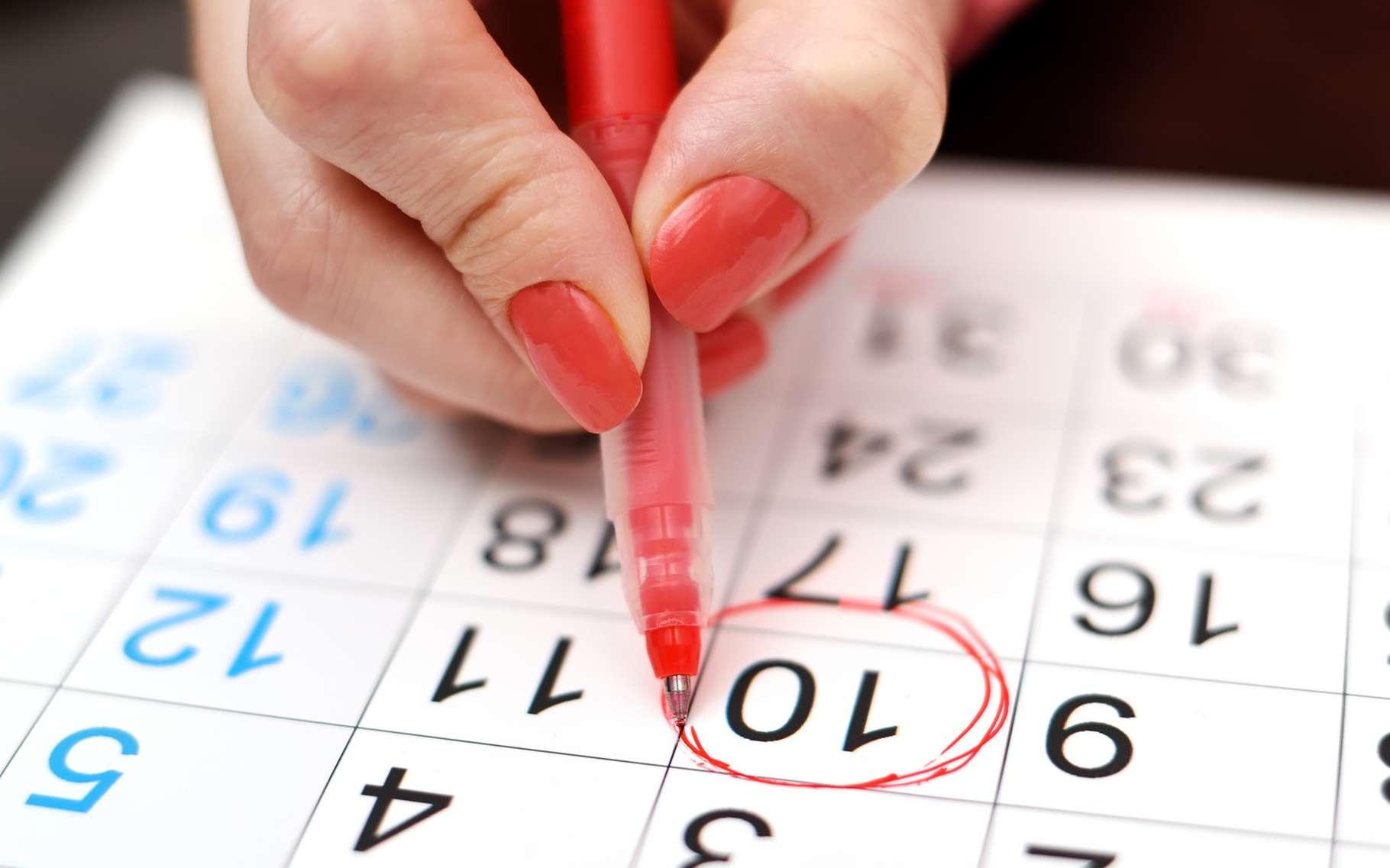 Il est possible de calculer sa date d'ovulation en fonction de son cycle naturel. © vetkit, Shutterstock