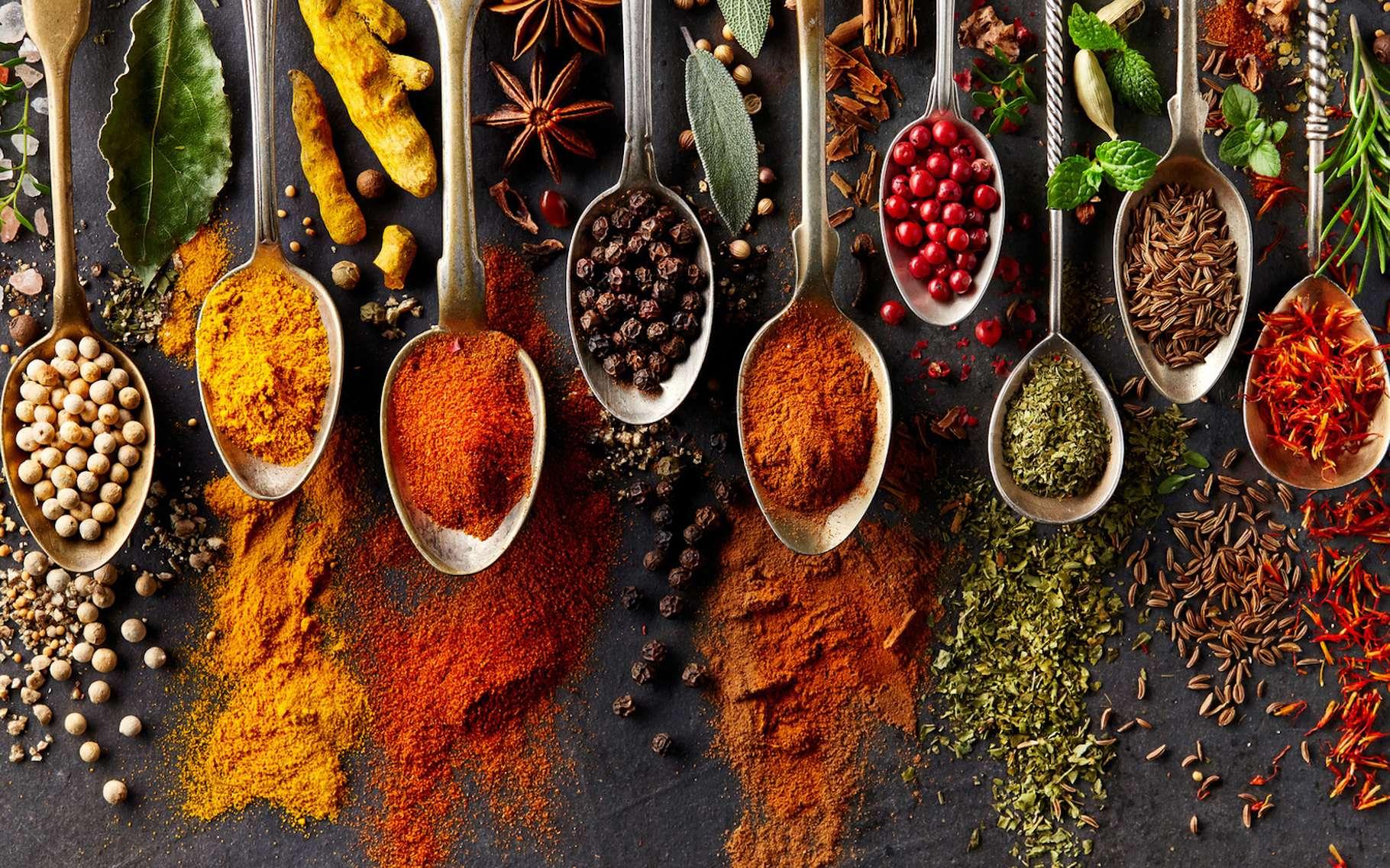 Les épices sont des aliments qui ne se périment jamais. Tout au plus perdent-elles un peu de leur goût… © Dionisvera, Fotolia