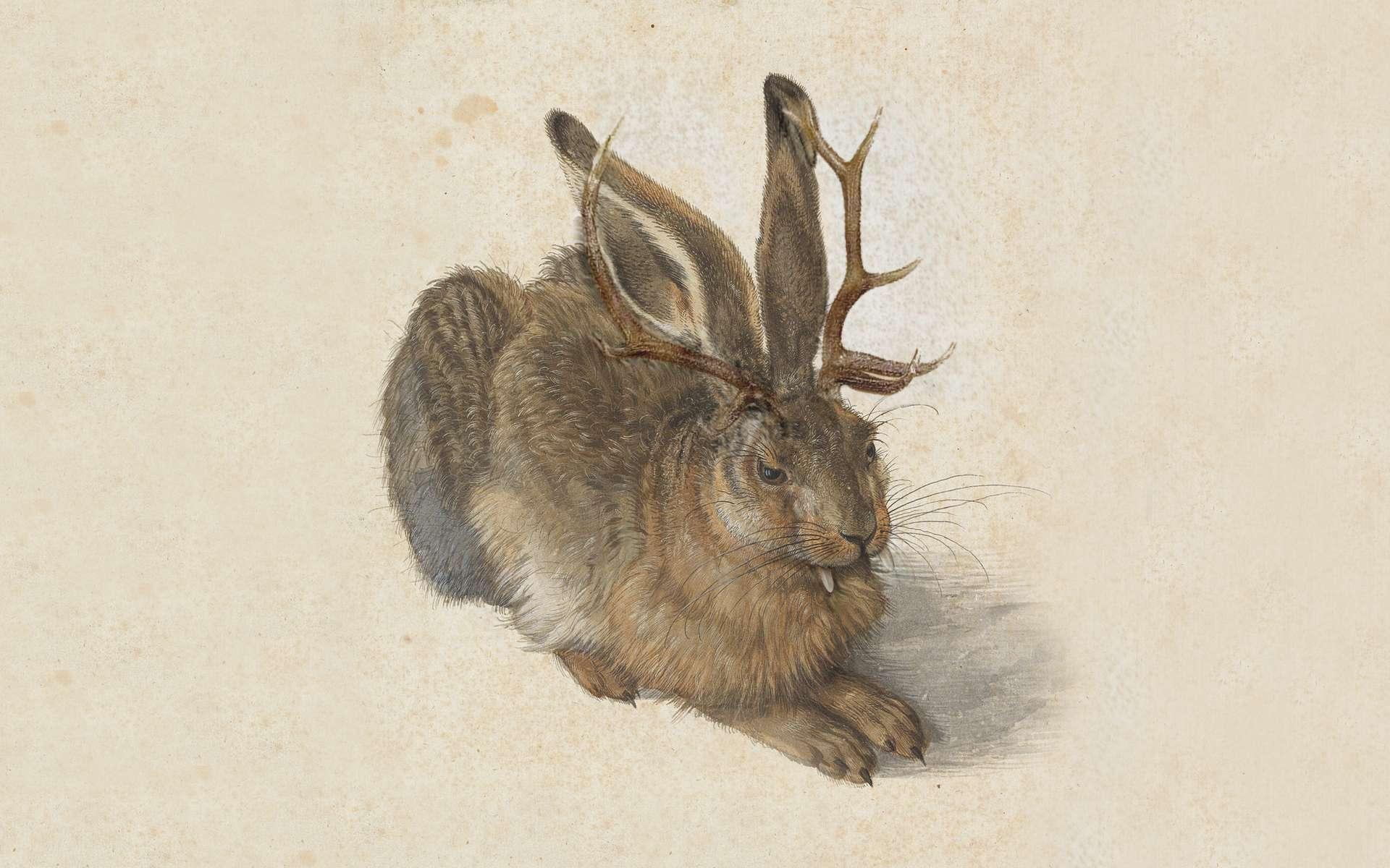 Le jackalope existe-t-il ? © Thomas Grunfeld, Google Arts & Culture