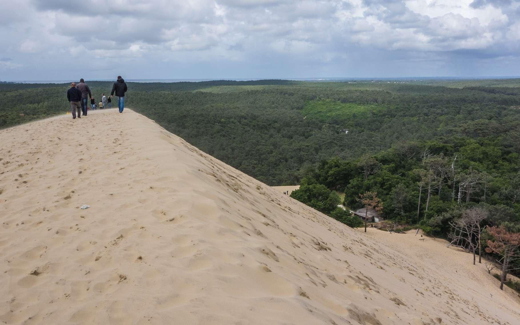 En 2016, la dune du Pilat culmine à 109,20 mètres d'altitude. © Graeme Churchard, Flickr, CC by 2.0