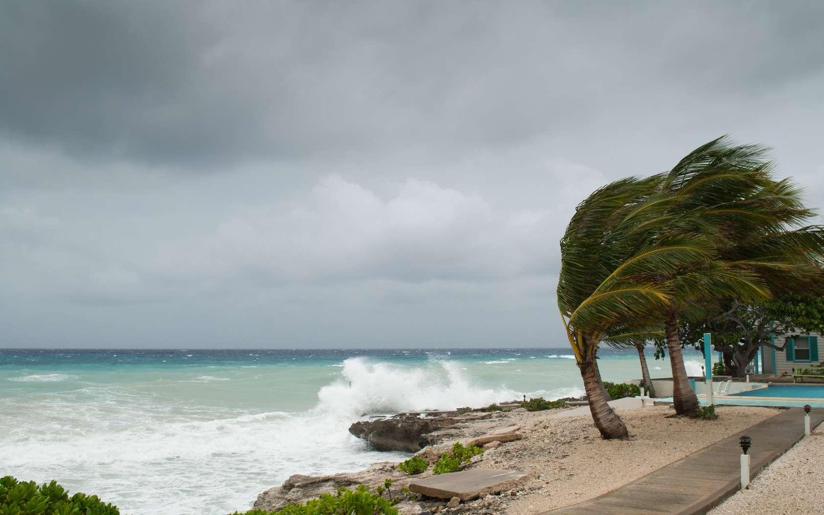 Irma, José : que signifie la catégorie d'un ouragan ? À partir de la catégorie 3, on parle d'ouragan majeur. © drew, Fotolia