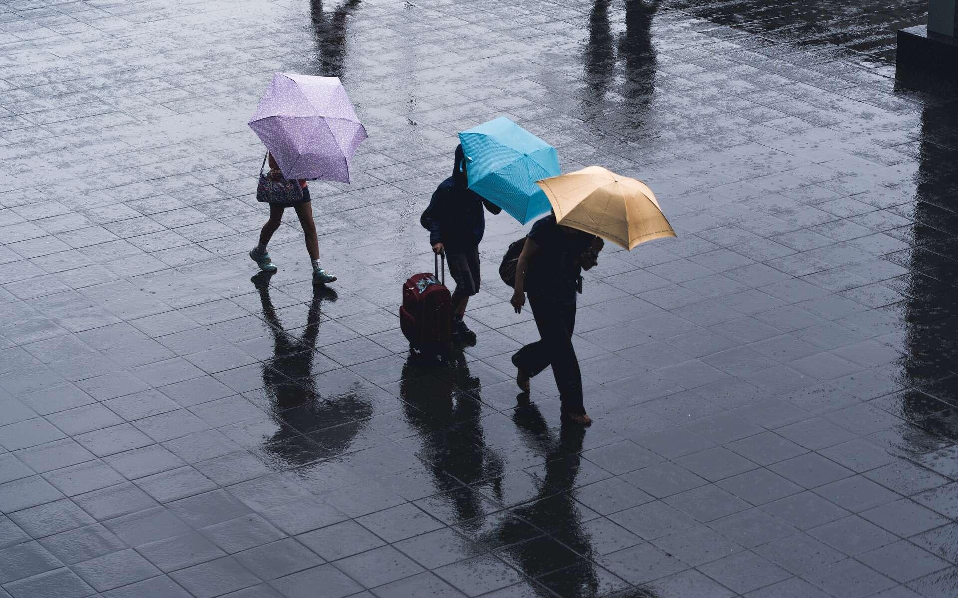 L'équivalent de plusieurs mois de pluie peuvent s'abattre en un endroit en quelques heures. © Ryoji Iwata, Unsplash