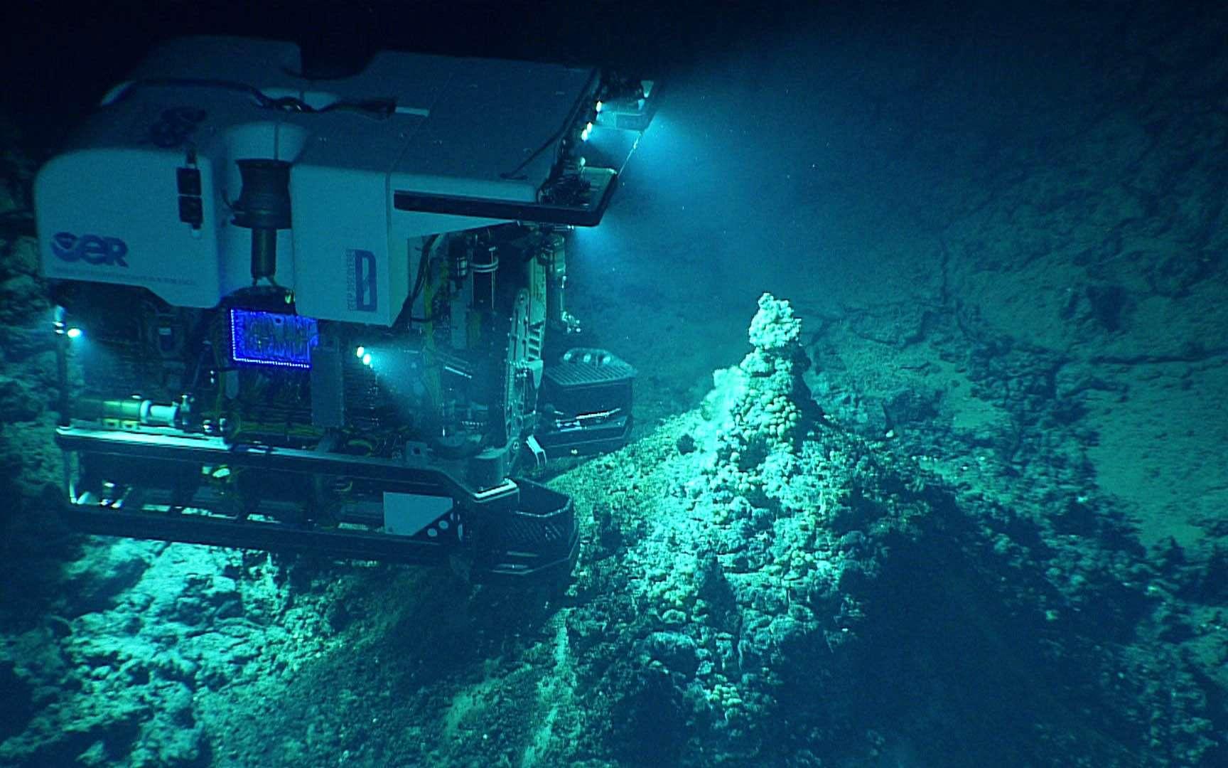 Ce robot, utilisé par les membres d'une mission de la NOAA à bord du navire Okeanos Explorer, est en plein travail autour d'une source hydrothermale de la fosse des Mariannes. © NOAA
