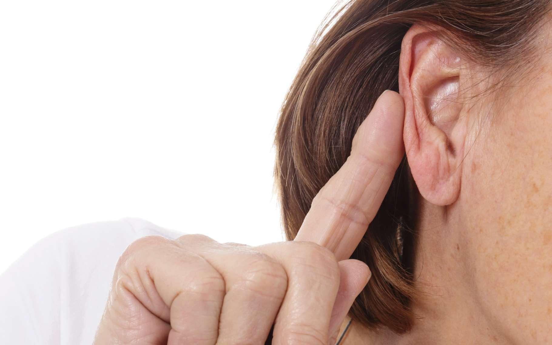 Laurel ou Yanny. Plus que d'une illusion auditive, les scientifiques parlent ici d'une figure ambiguë. © mariesacha, Fotolia