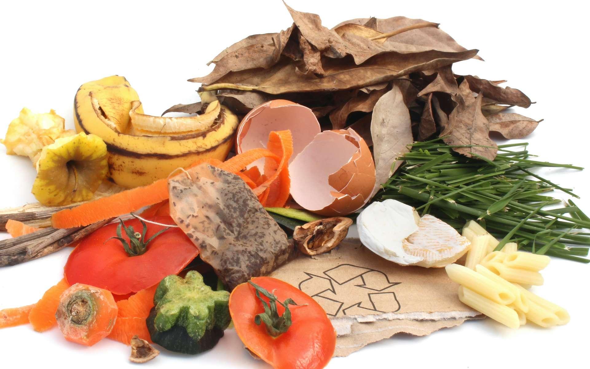 Recettes anti-gaspi : ces déchets alimentaires peuvent encore être consommés. © Brad Pict, Adobe Stock