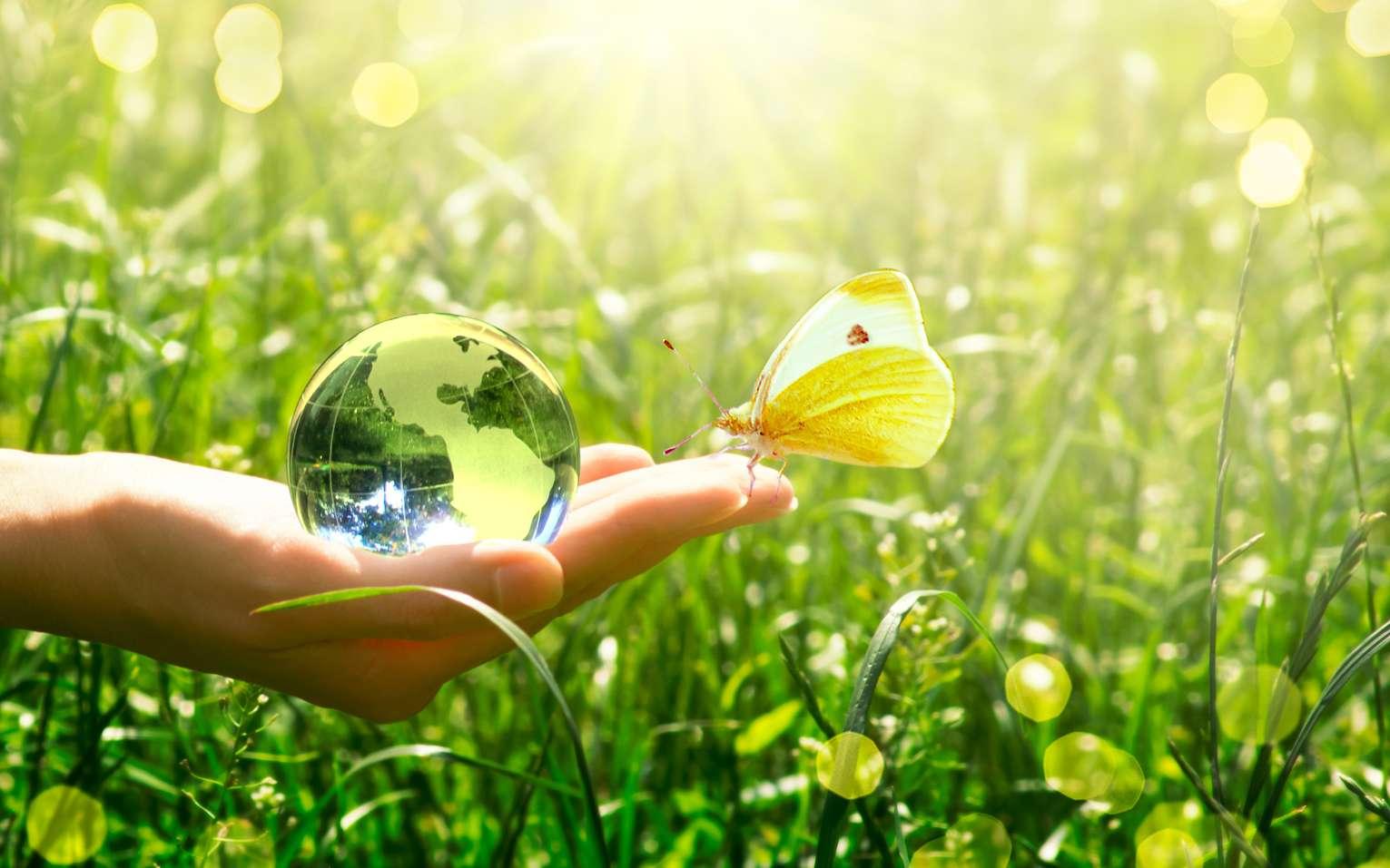 Pour la protection de la nature, il existe des métiers de l'environnement accessibles à tous. © US Navy, Wikimedia Commons, DP