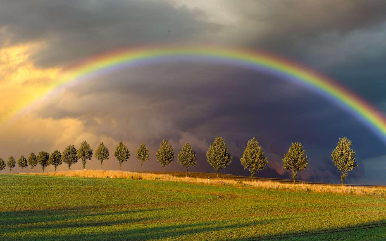 Un arc-en-ciel est un phénomène optique faisant intervenir des gouttes d'eau et la lumière du soleil. © Mike Mareen, Fotolia