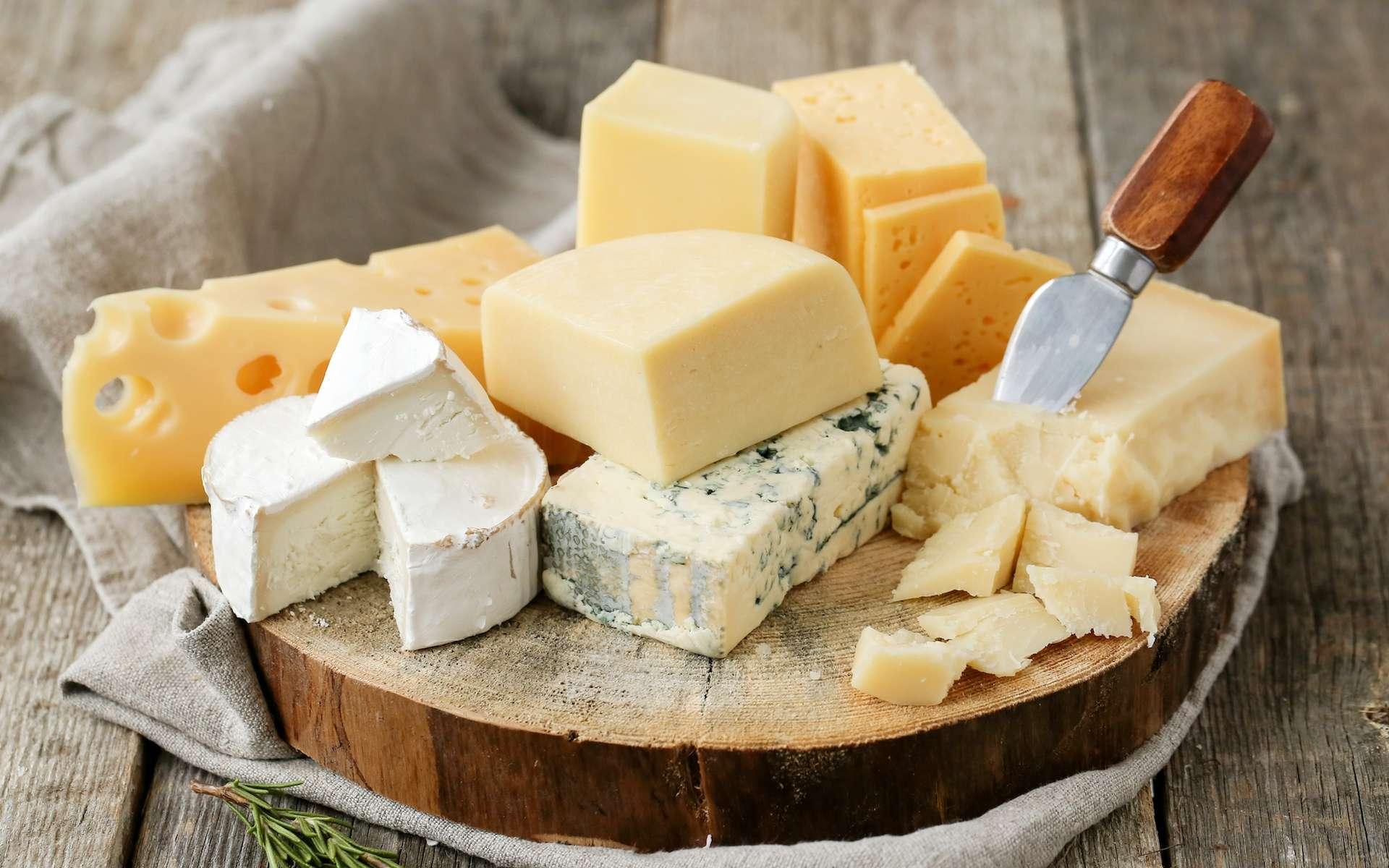 Il y aurait quelque 1.200 variétés de fromages en France selon le Centre national interprofessionnel de l'économie laitière. En voici quelques-uns. © Yeko Photo Studio, fotolia