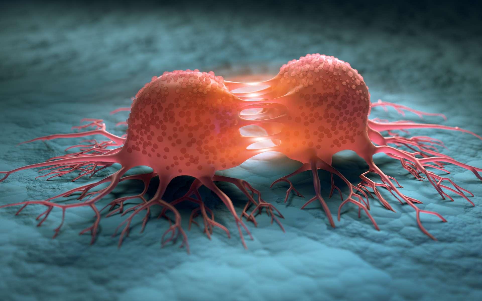 Au Moyen Âge, la proportion de britanniques souffrant d'un cancer au moment du décès aurait oscillé entre 9 et 14 %. © peterschreiber.media, Adobe Stock