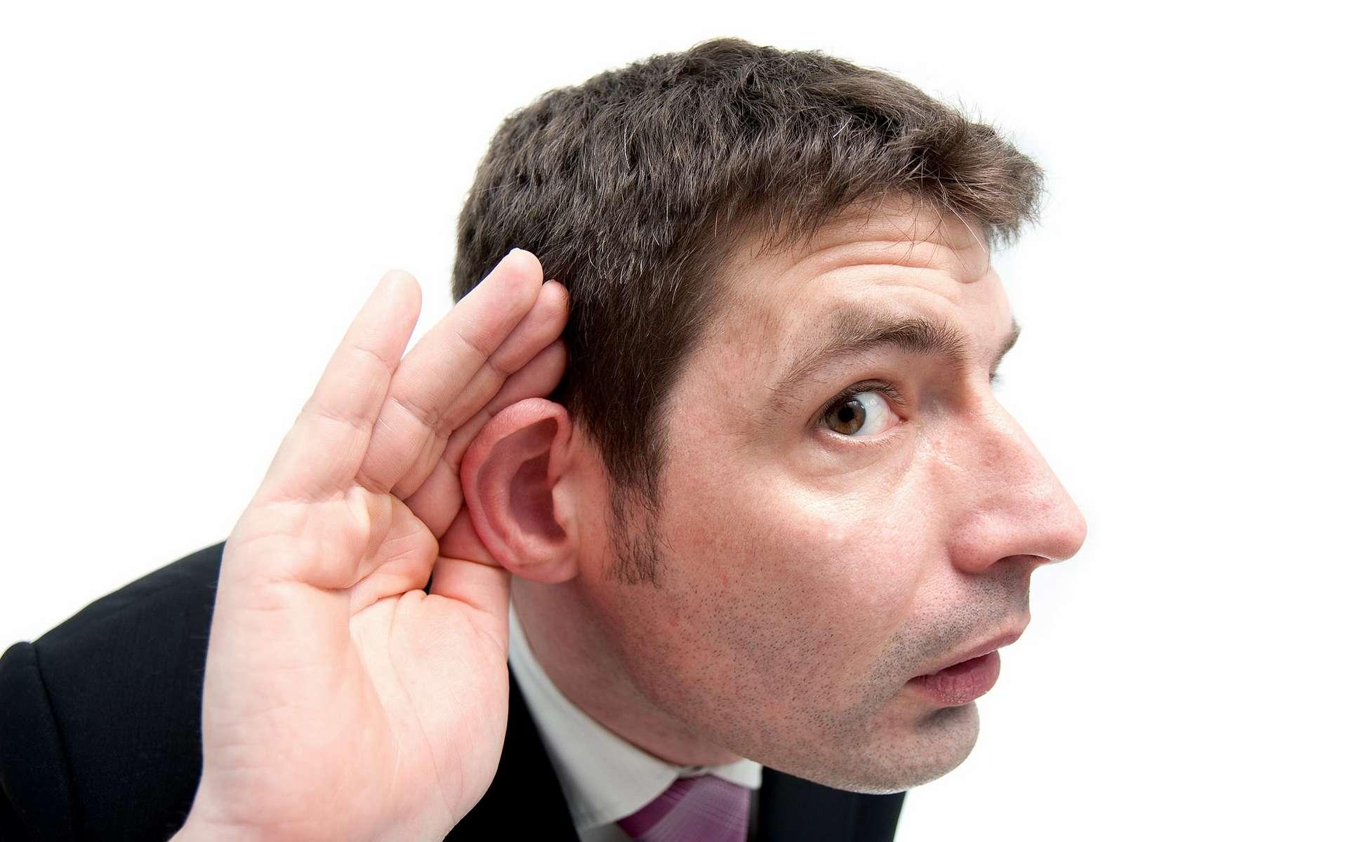 Le plus petit os du corps humain s'appelle l'étrier et se situe dans l'oreille interne. © Paul Townsend, Flickr, CC by-nd 2.0
