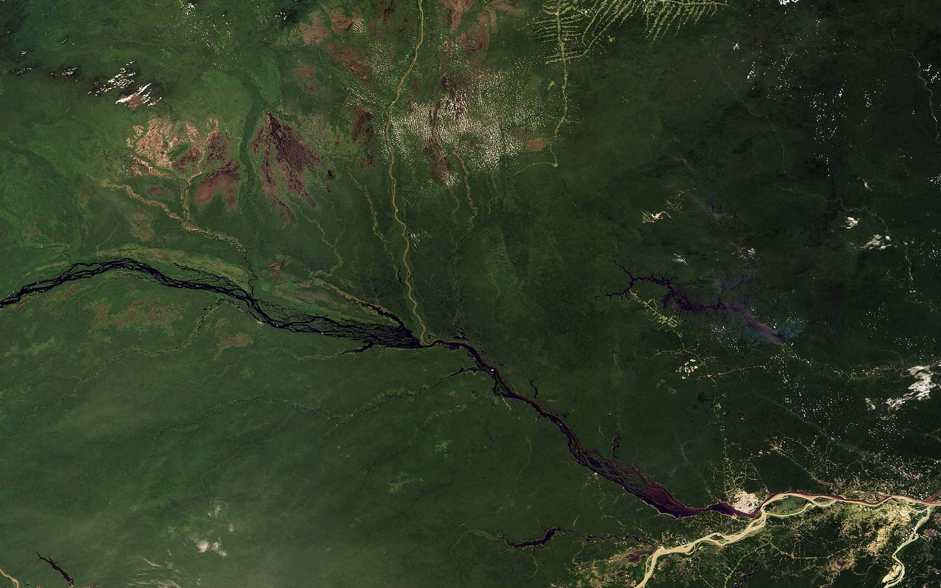 Sur cette image acquise par la caméra Meris d'Envisat le 28 septembre 2008, le Rio Negro (plus grand cours d'eaux noires) et le Rio Solimões (plus grand cours d'eaux blanches du bassin de l'Amazone se mêlent pour former le fleuve Amazone juste en aval de Manaus, au Brésil. Crédit Esa