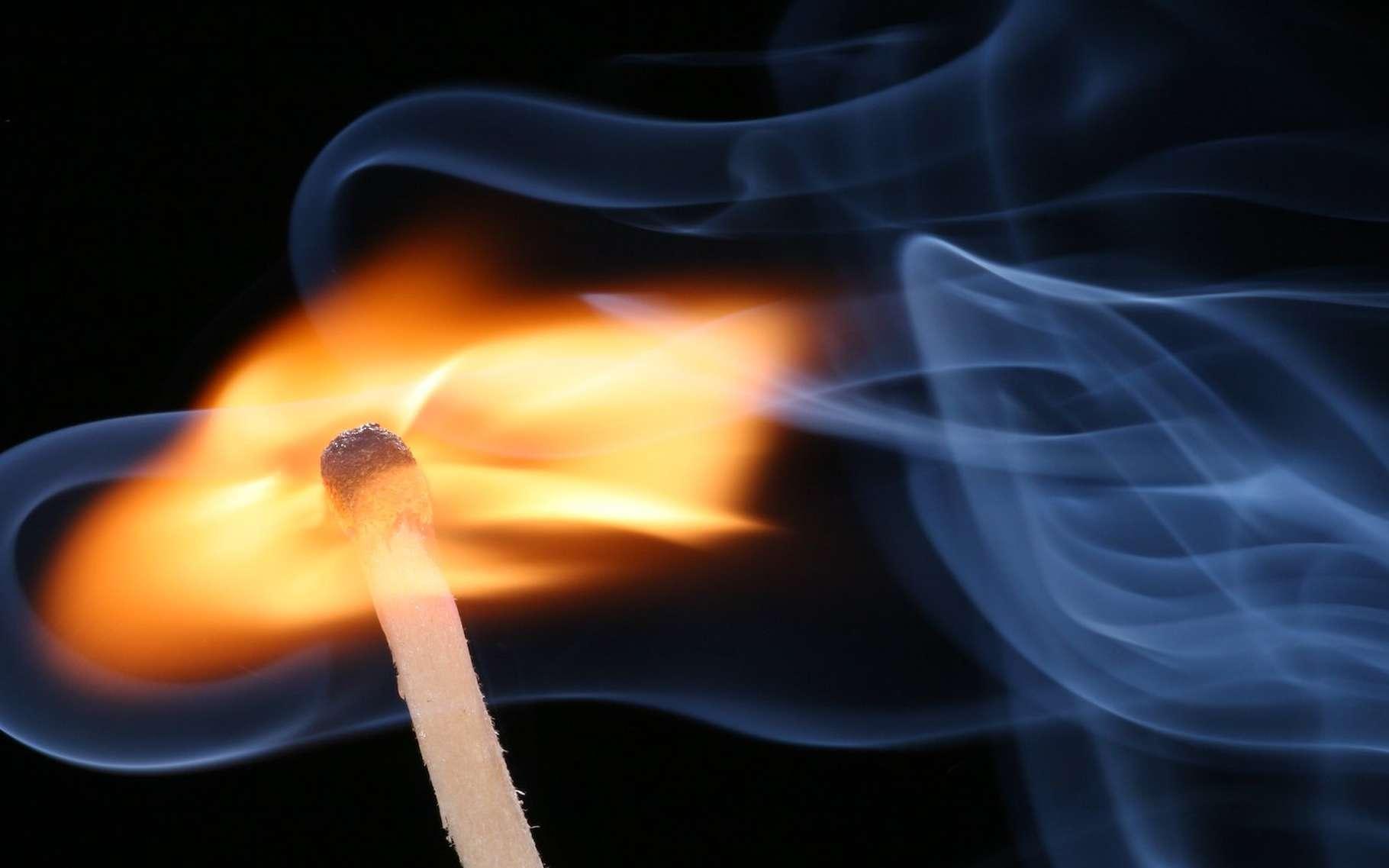 Le phosphore rouge utilisé pour la fabrication des allumettes est un allotrope du phosphore. © Sebastian Ritter, Wikipédia, CC by-sa 2.5