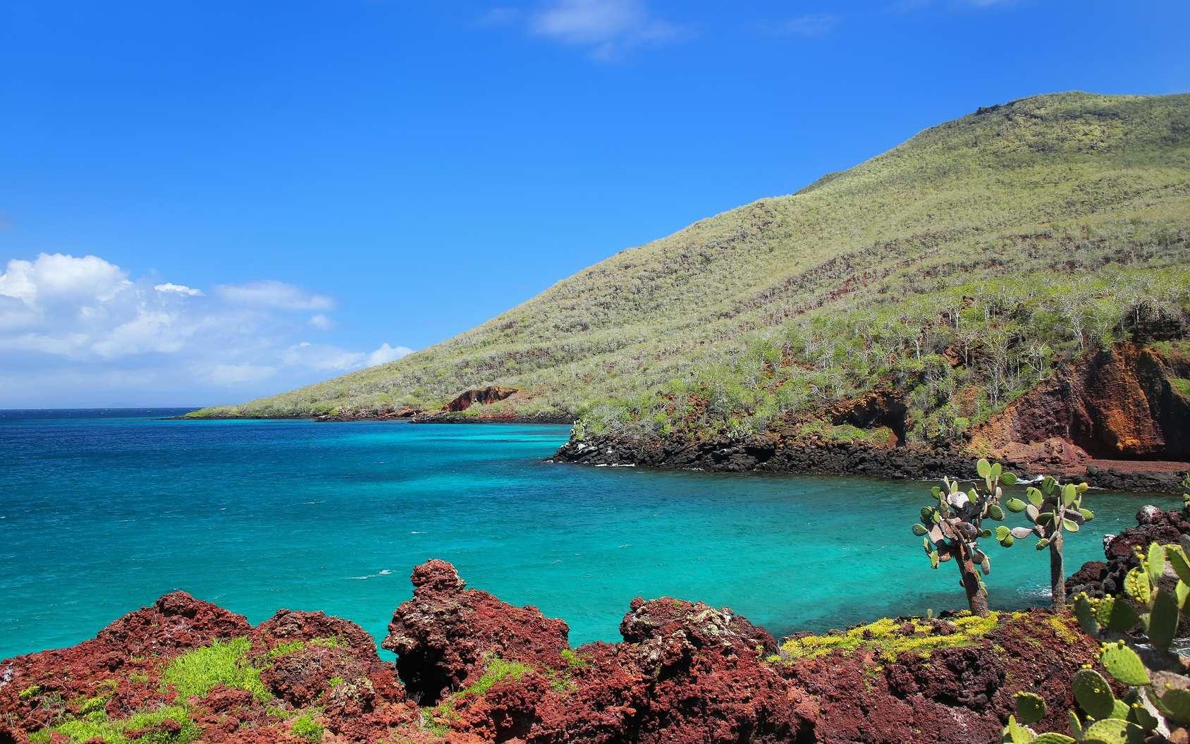 Les chercheurs ont exploré le secret de la biodiversité des îles Galápagos pour mieux la protéger contre les dégradations du climat. © donyanedomam, Fotolia