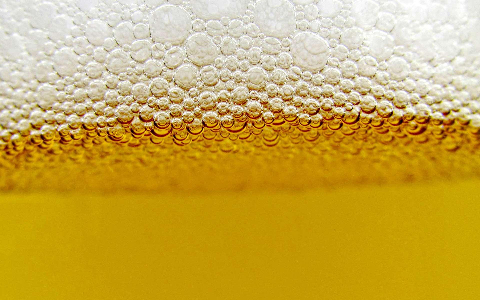 L'alcool de la bière provient de la fermentation alcoolique effectuée naturellement par la levure Saccharomyces cerevisiae. C'est exactement ce que vivait malgré lui un Texan de 61 ans. © Wakala, deviantart.com, cc by 3.0