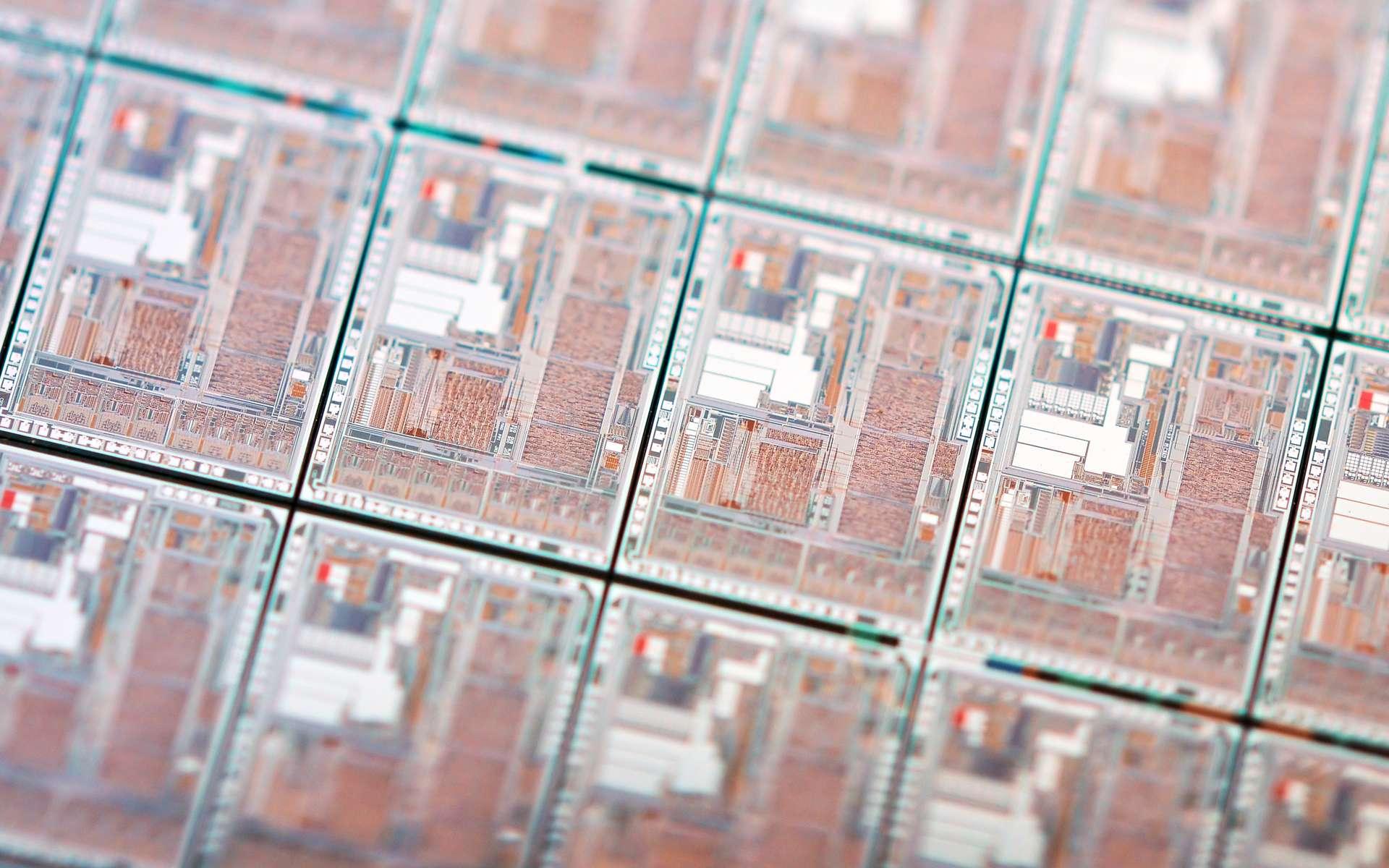 Pour limiter l'impact environnemental des systèmes électroniques à base de silicium - ici, une série de micropuces -, les chercheurs imaginent des dispositifs biodégradables. © Tambako The Jaguar, Flickr, CC by-nd 2.0