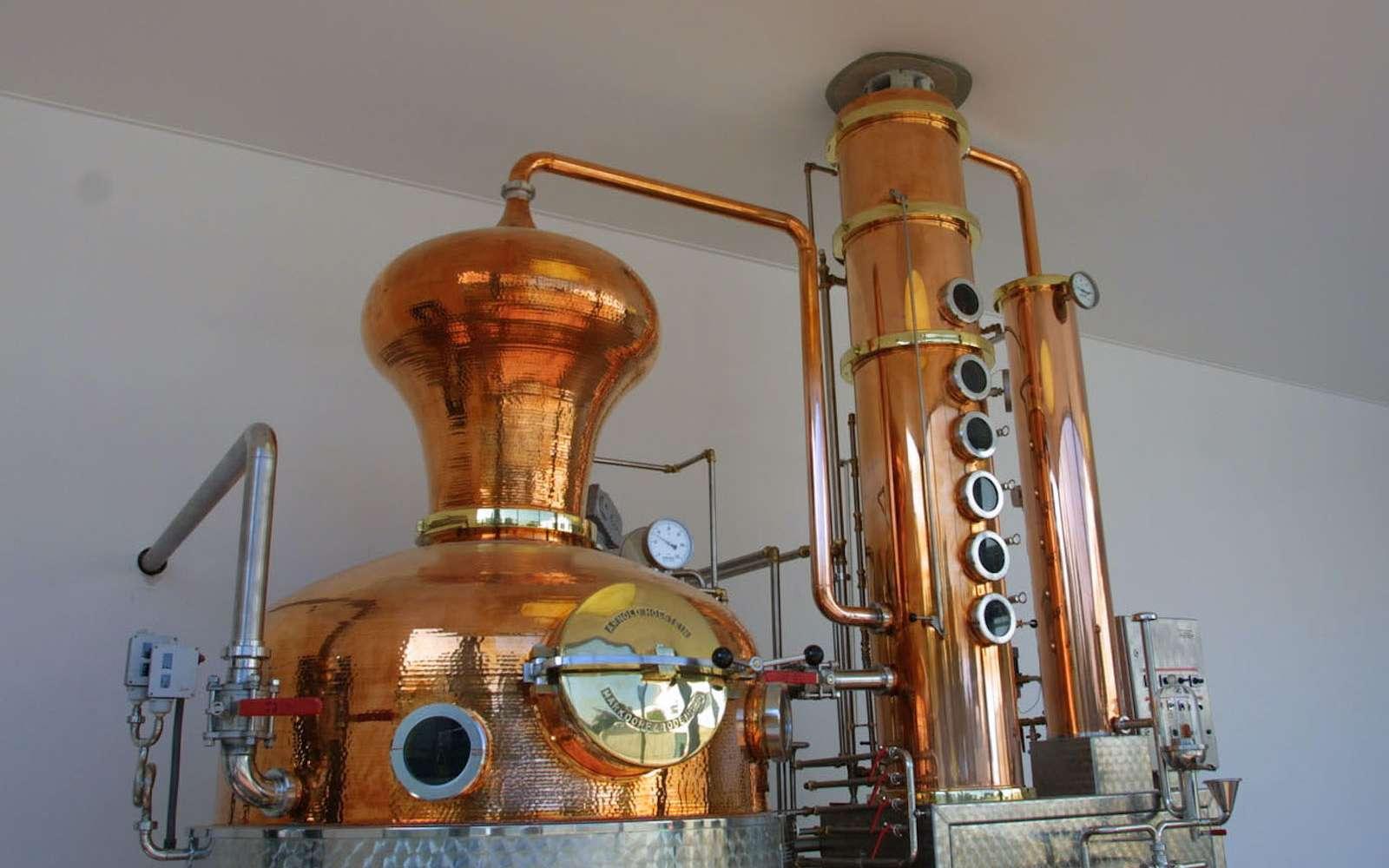 Un alambic est un appareil destiné à distiller l'alcool ou des huiles essentielles. © Lisandru2b, Wikipedia