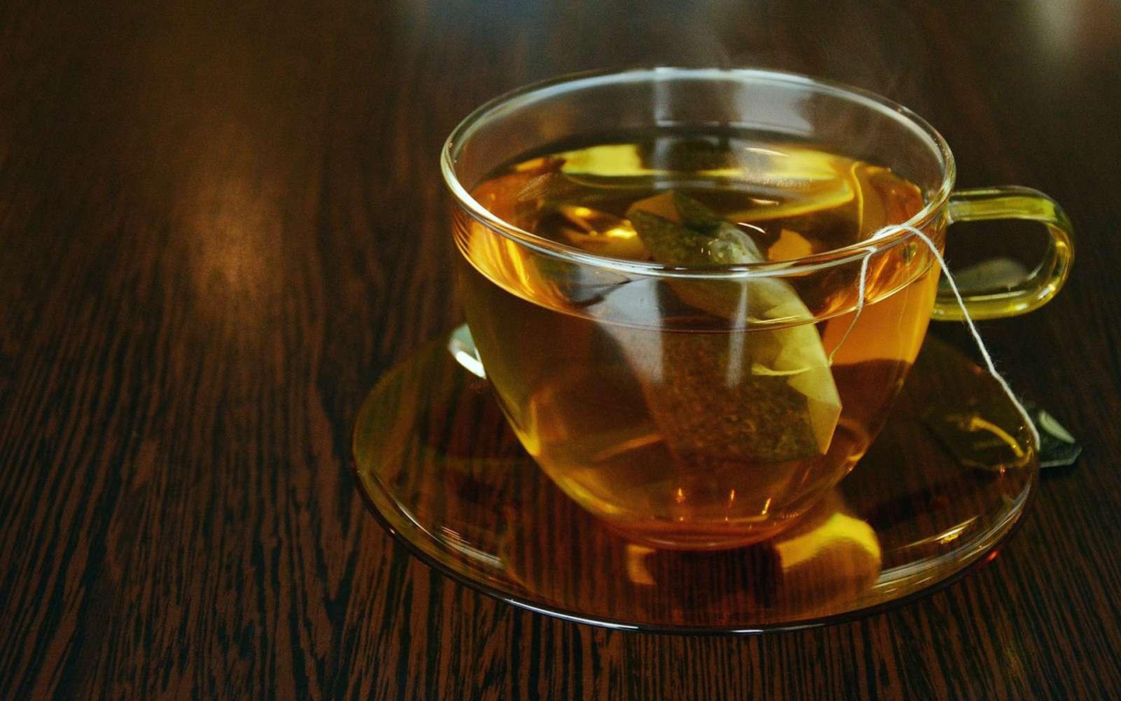 Des chercheurs de l'université McGill (Canada) ont analysé des eaux dans lesquelles des sachets de thé en plastique ont infusé. Elles grouillaient de particules de plastique. © congerdesign, Pixabay License