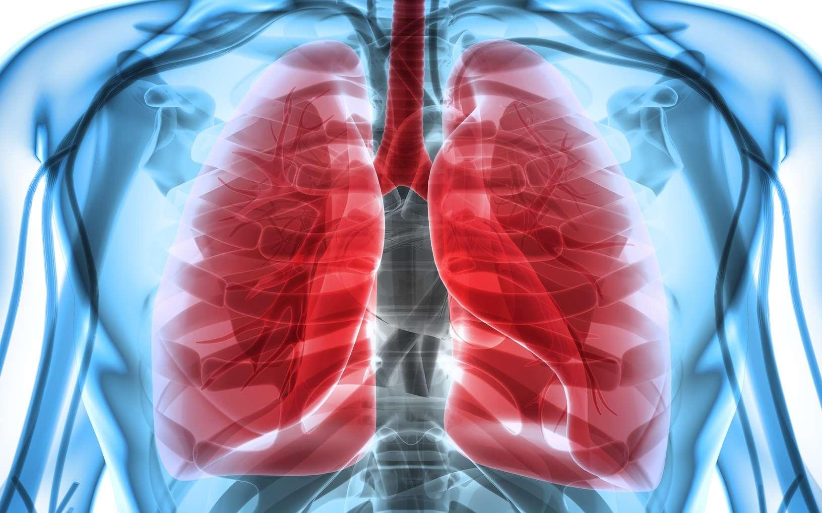 Les patients atteints de mucoviscidose sécrètent un mucus épais, ce qui favorise des infections respiratoires. © yodiyim, Fotolia