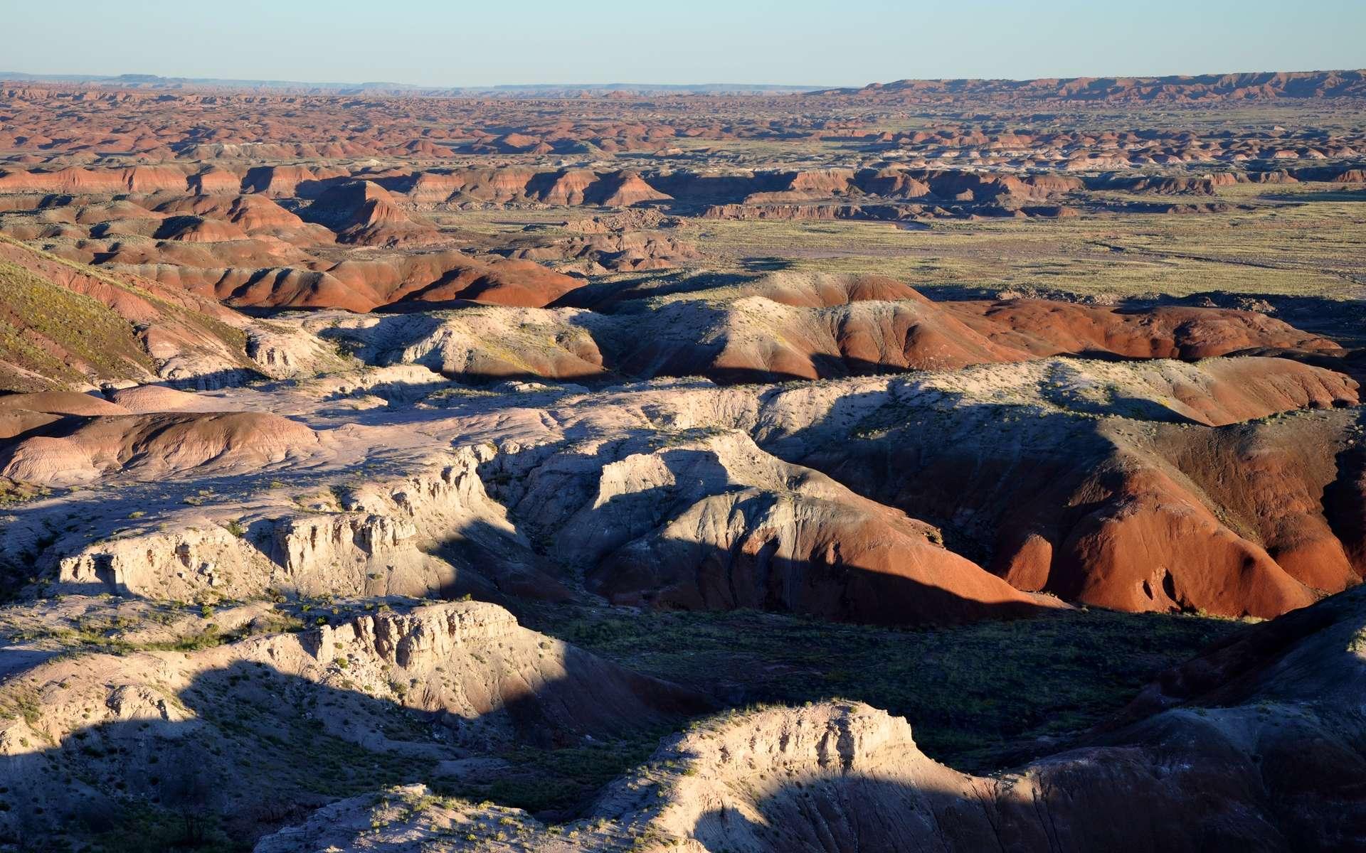 Badlands désertiques vues de Tawa Point dans le parc national de Petrified Forest, dans le nord-est de l'Arizona, aux États-Unis. © Finetooth