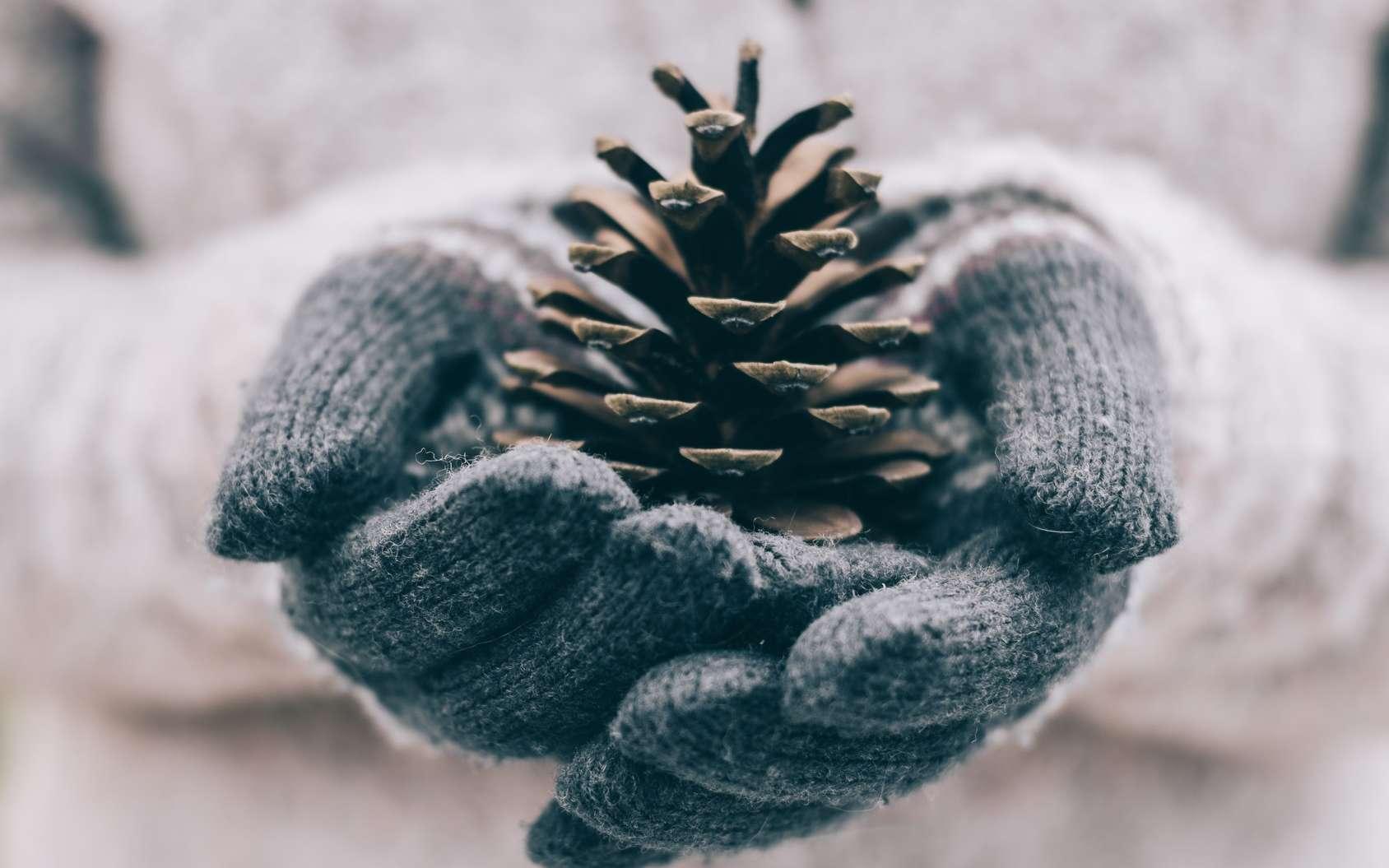 Le froid peut favoriser un changement de couleur des doigts. © Laszlo, Fotolia