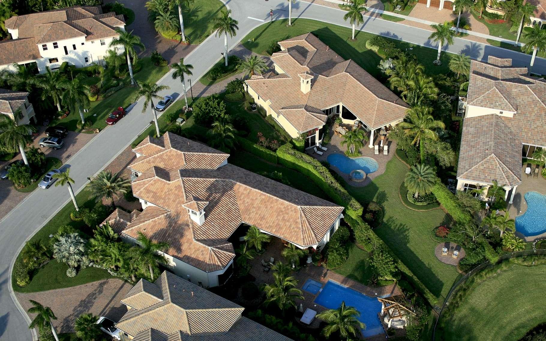 Des lieux de rêve pour habiter… Mais avec des tas d'insectes dans leurs maisons. © TI, Shutterstock