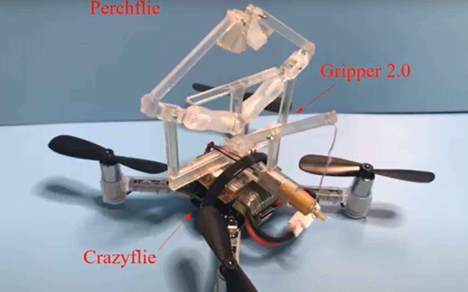 Ce drone peut s'accrocher à un élément et y rester le temps nécessaire pour des missions de surveillance, par exemple. © Adaptive Robotics Lab