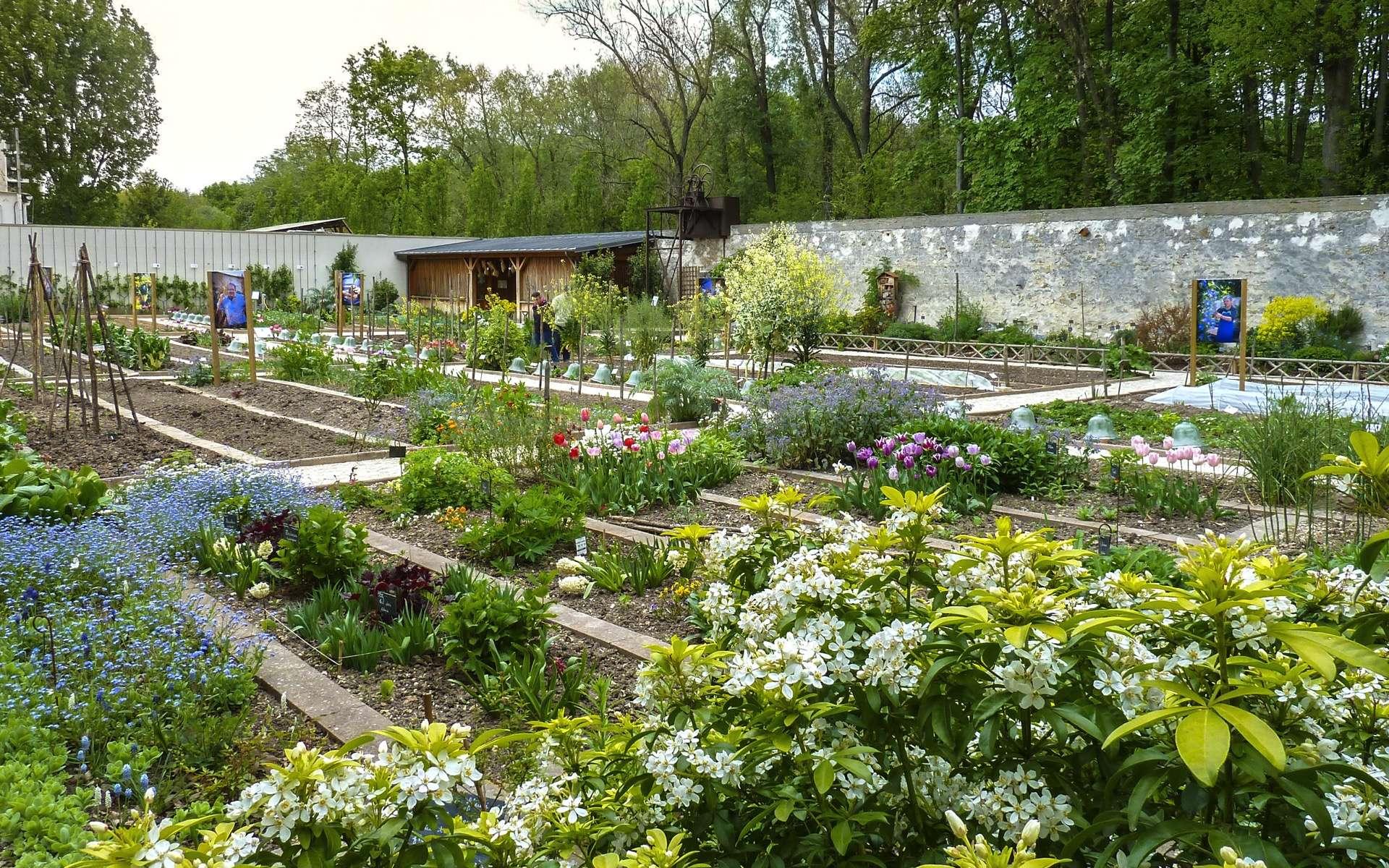 Le jardin potager de la Maison Caillebotte, à Yerres en Essonne. © Ghislaine Laussel pour Futura.