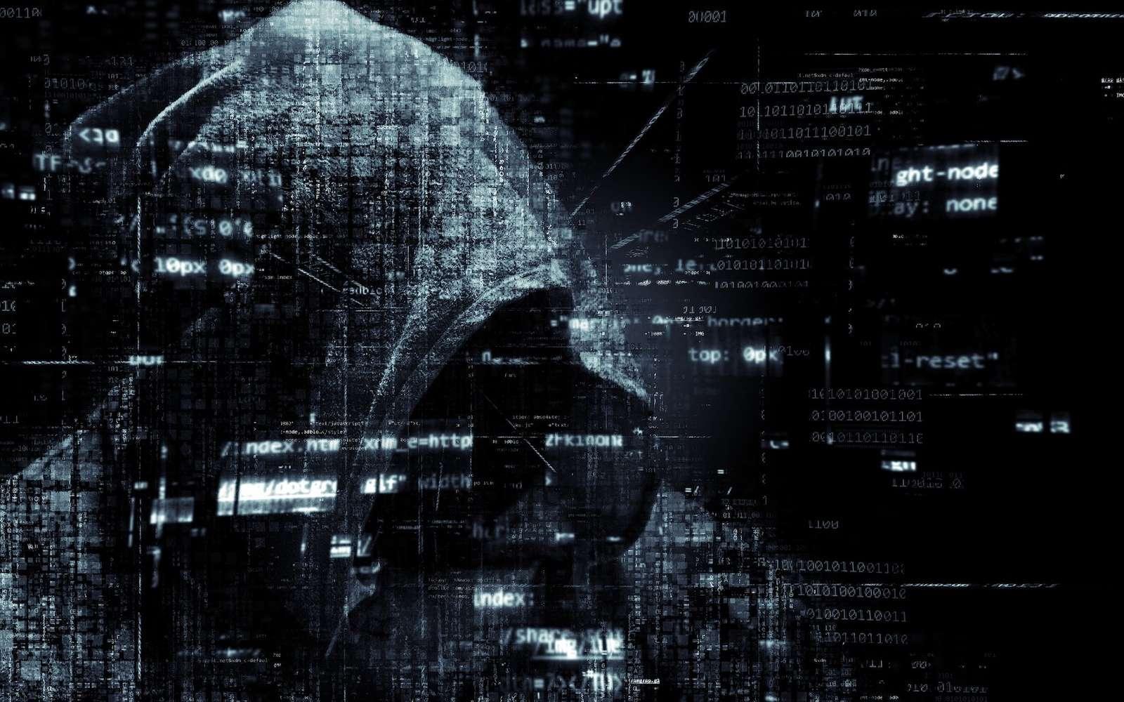 Très évolué, ce malware vole les informations de paiement depuis les comptes Facebook, Amazon et Airbnb, et utilise le compte Facebook pour inviter de nouveaux amis. © TheDigitalArtist, Pixabay