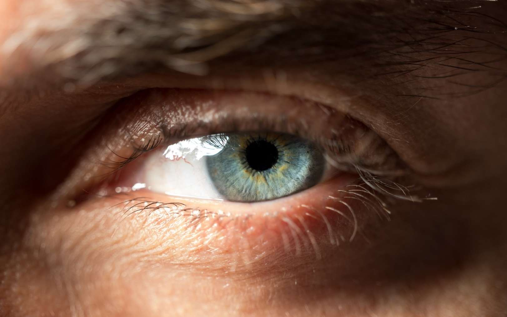 Deux patients ont recouvré la vue grâce à des cellules souches. Ils souffraient de DMLA humide. © Hakan, Fotolia