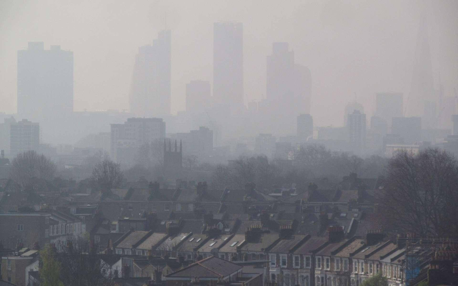 Dans les grandes villes, les particules polluantes contiennent des gènes d'antibiorésistance. © David Holt, Flickr