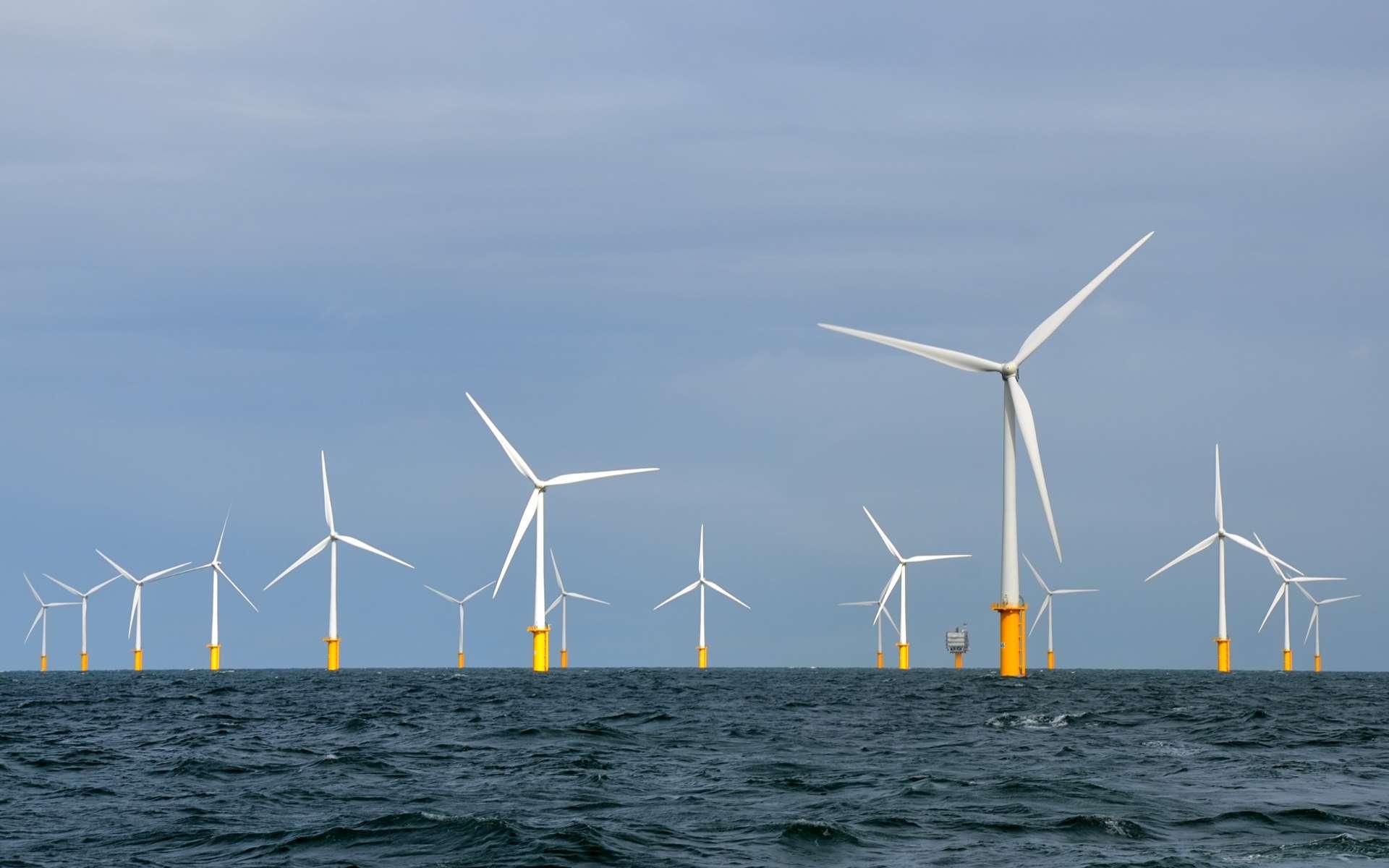 Le parc éolien de Belwind, construit en mer du Nord, à 46 kilomètres du port belge de Zeebruges. © Hans Hillewaert, Flickr, Wikimedia Commons, CC by-sa 4.0