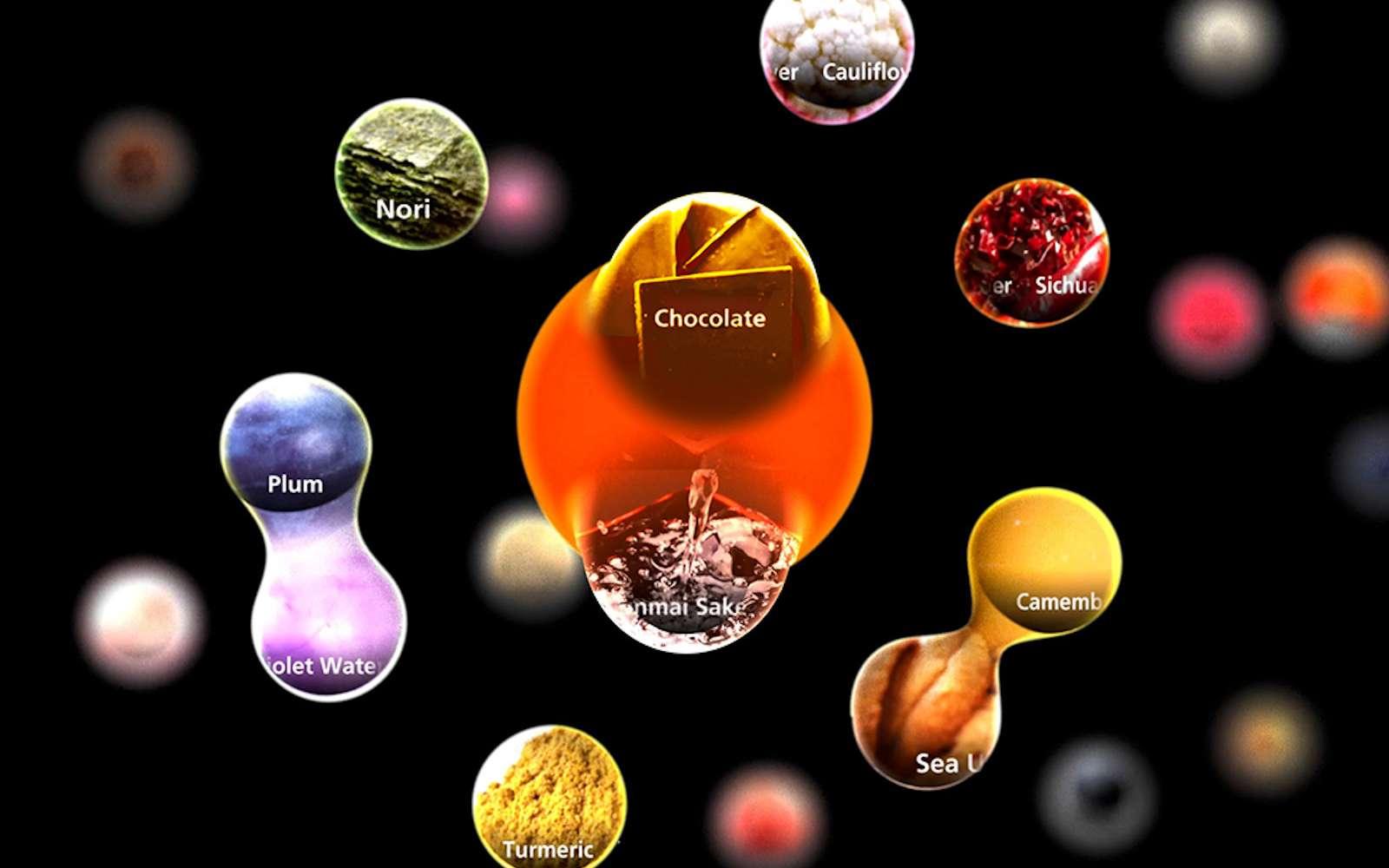 L'IA prendra en compte le goût, l'arôme, la saveur, la structure moléculaire et les nutriments pour associer les aliments et créer ses recettes. © Sony