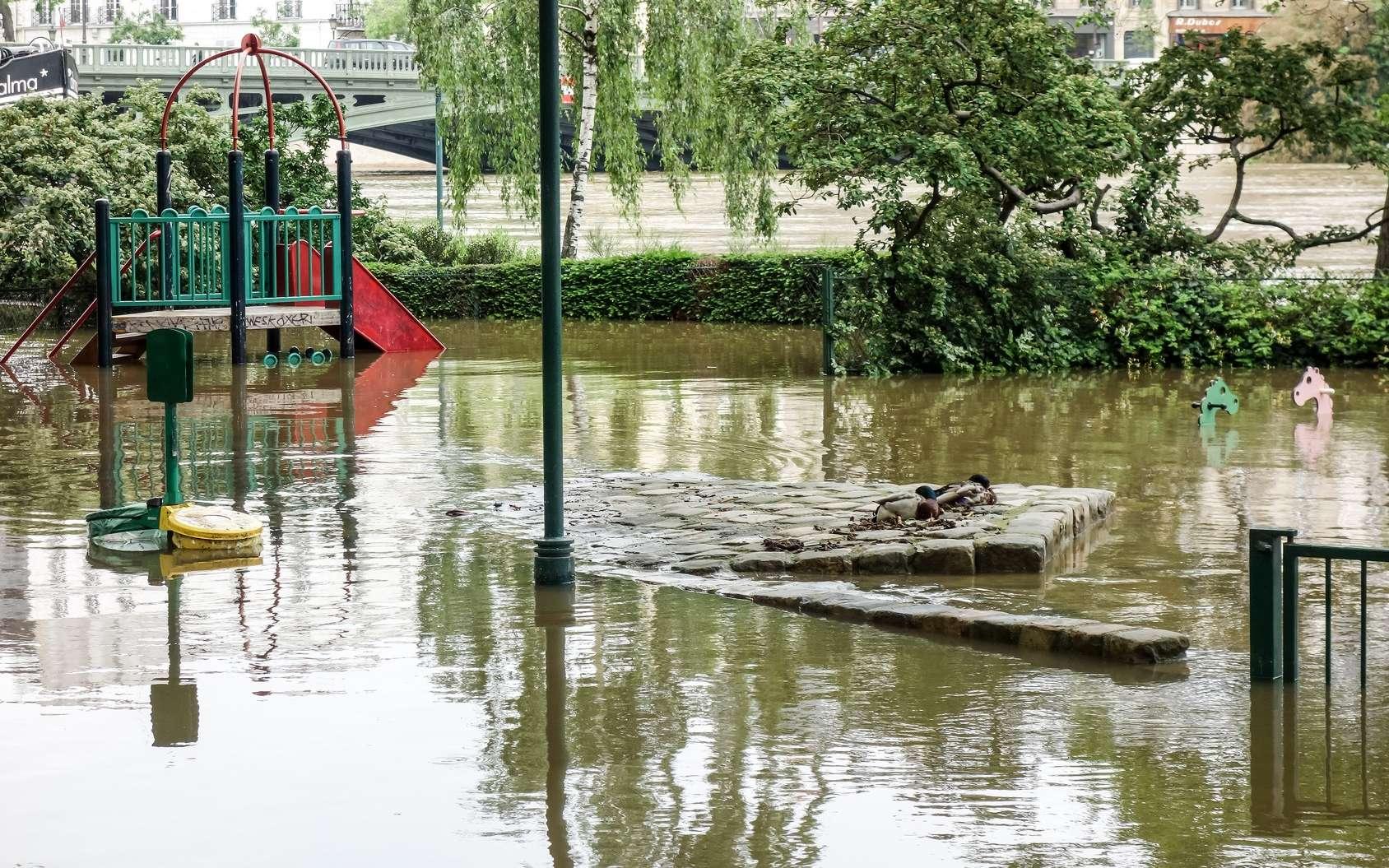 Paris a connu une crue de la Seine en juin 2016. © ilolab, Fotolia