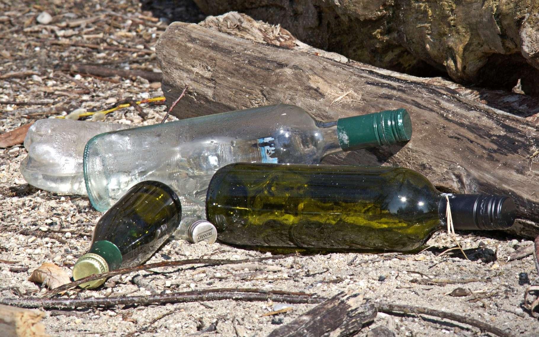 Chaque Français produit quelque 350 kg de déchets par an. Une partie se retrouve abandonnée dans l'environnement pour une durée qui dépend de la nature du déchet en question. Le verre compte parmi les déchets ménagers dont la durée de vie est la plus importante. © Antranias, Pixabay, DP