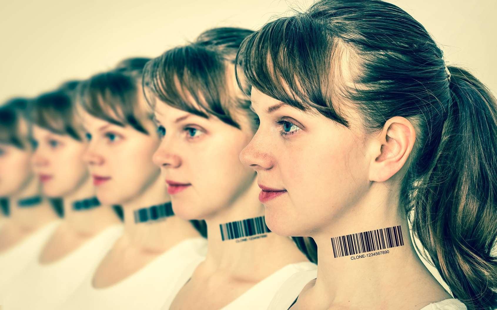 Les clones sont tous génétiquement identiques. © andriano_cz, Fotolia