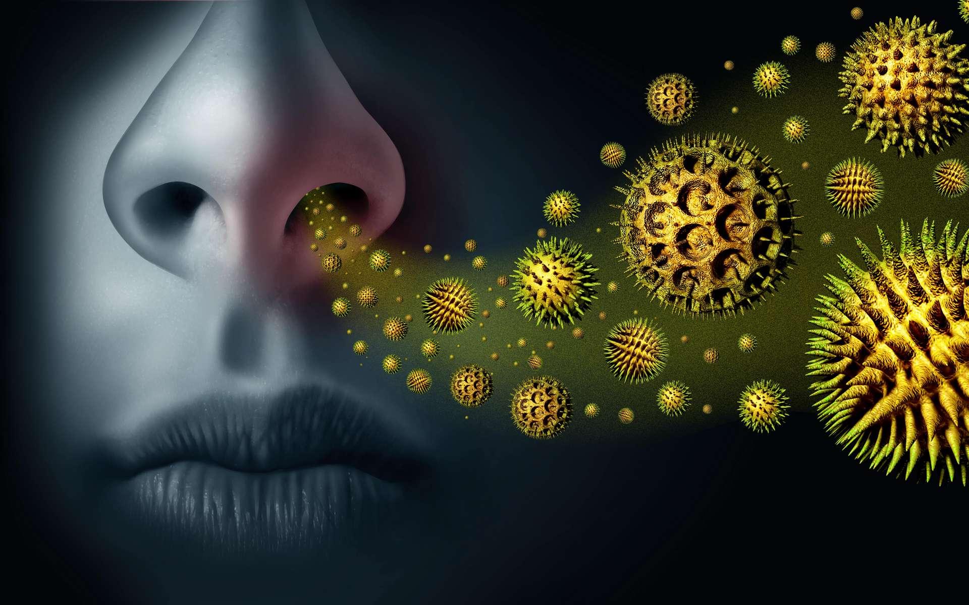 L'allergie au pollen, appelée pollinose, touche 20 à 30% des français. © Freshidea, Adobe Stock