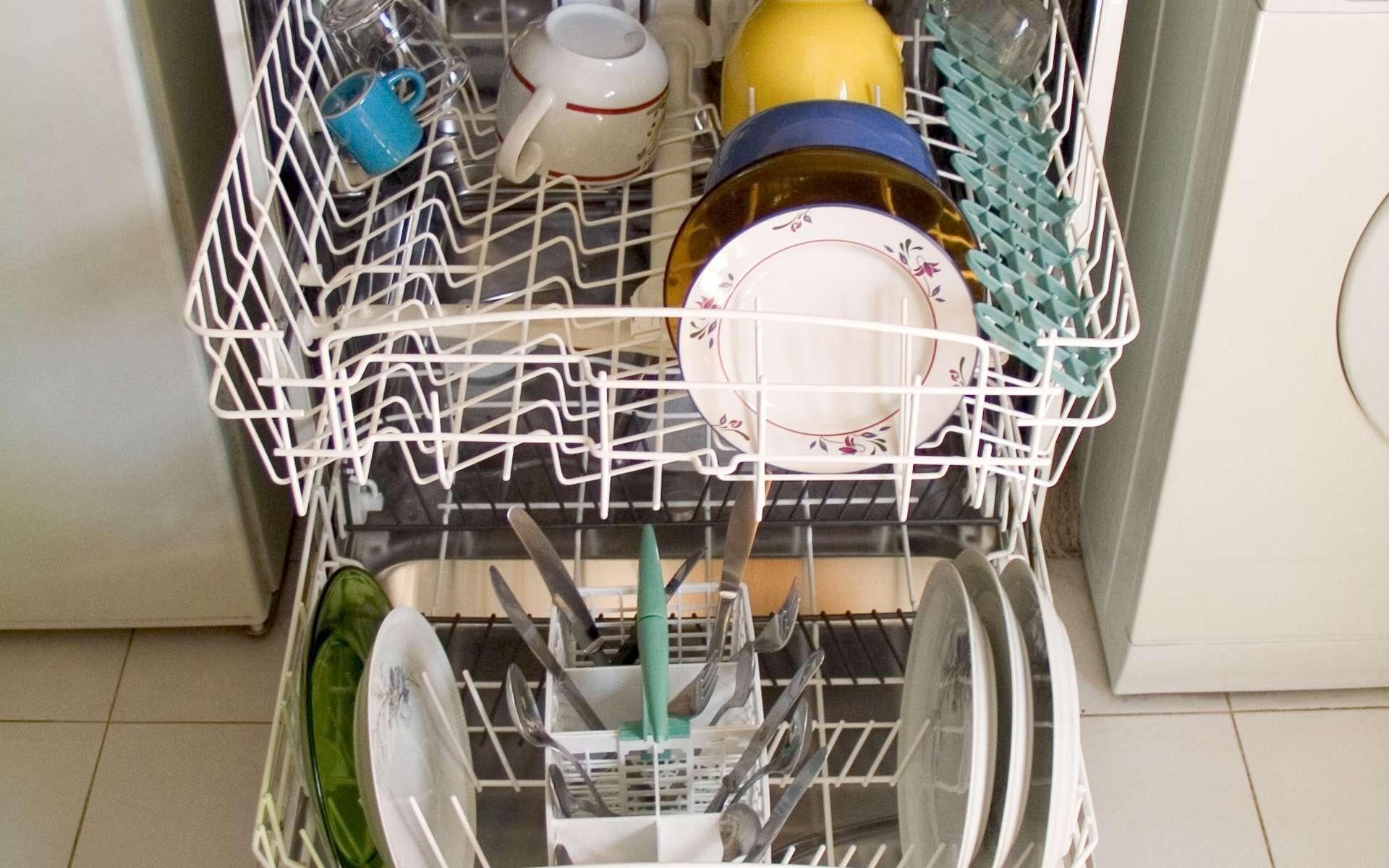 L'évacuation du lave-vaisselle peut se faire dans un évier ou une baignoire. © Carlos Paes, Wikimedia Commons, CC