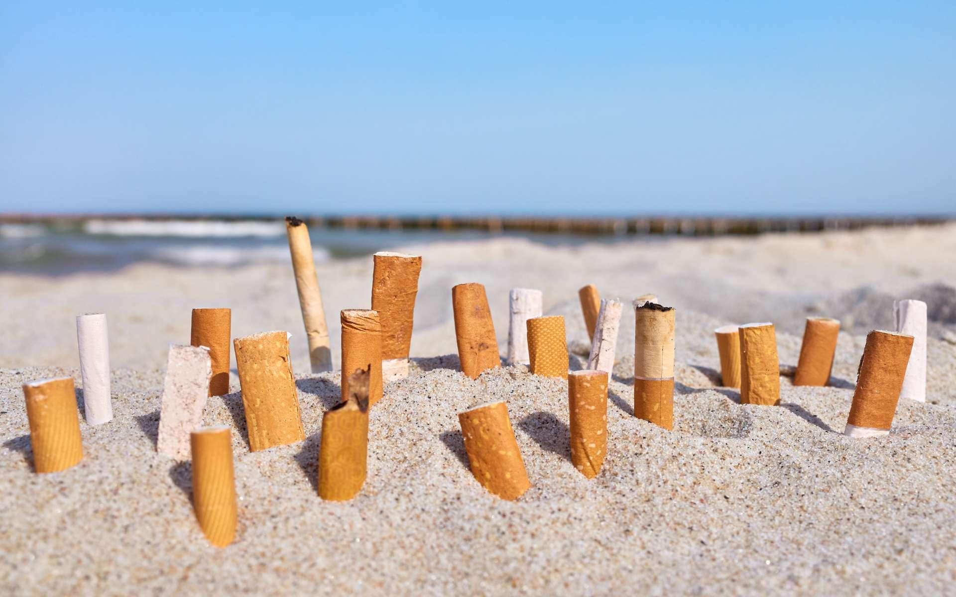 Quel est l'impact des mégots sur le milieu marin ? © MaciejBledowski, Adobe Stock