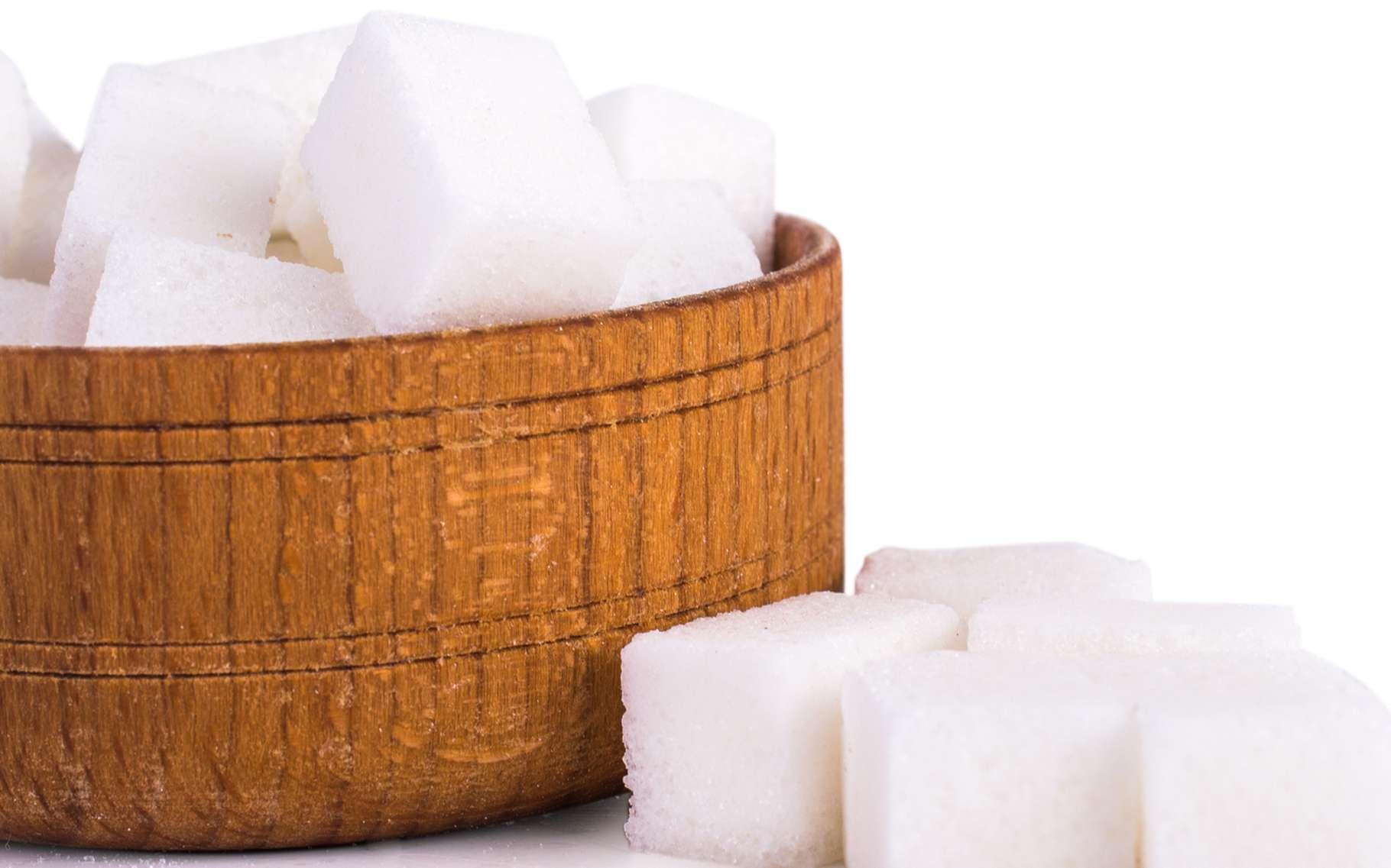 La fabrication du sucre est tout un art. La France est le 10e producteur de sucre au monde. En 2015-2016, pas moins de 3 millions de tonnes de sucre ont été utilisées dans notre pays et la filière a généré un chiffre d'affaire de quelque 4,3 milliards d'euros. © MsMaria, Shutterstock