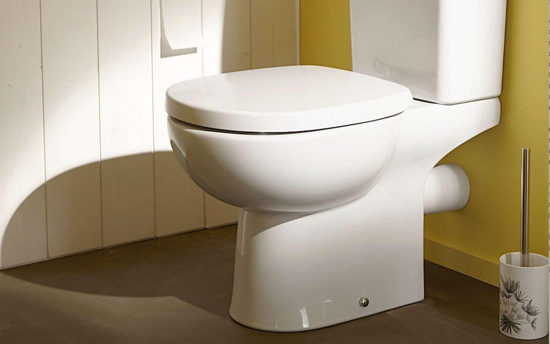 La pipe est le tube qui relie la cuvette du WC au système d'évacuation des eaux usées. © Leroy Merlin