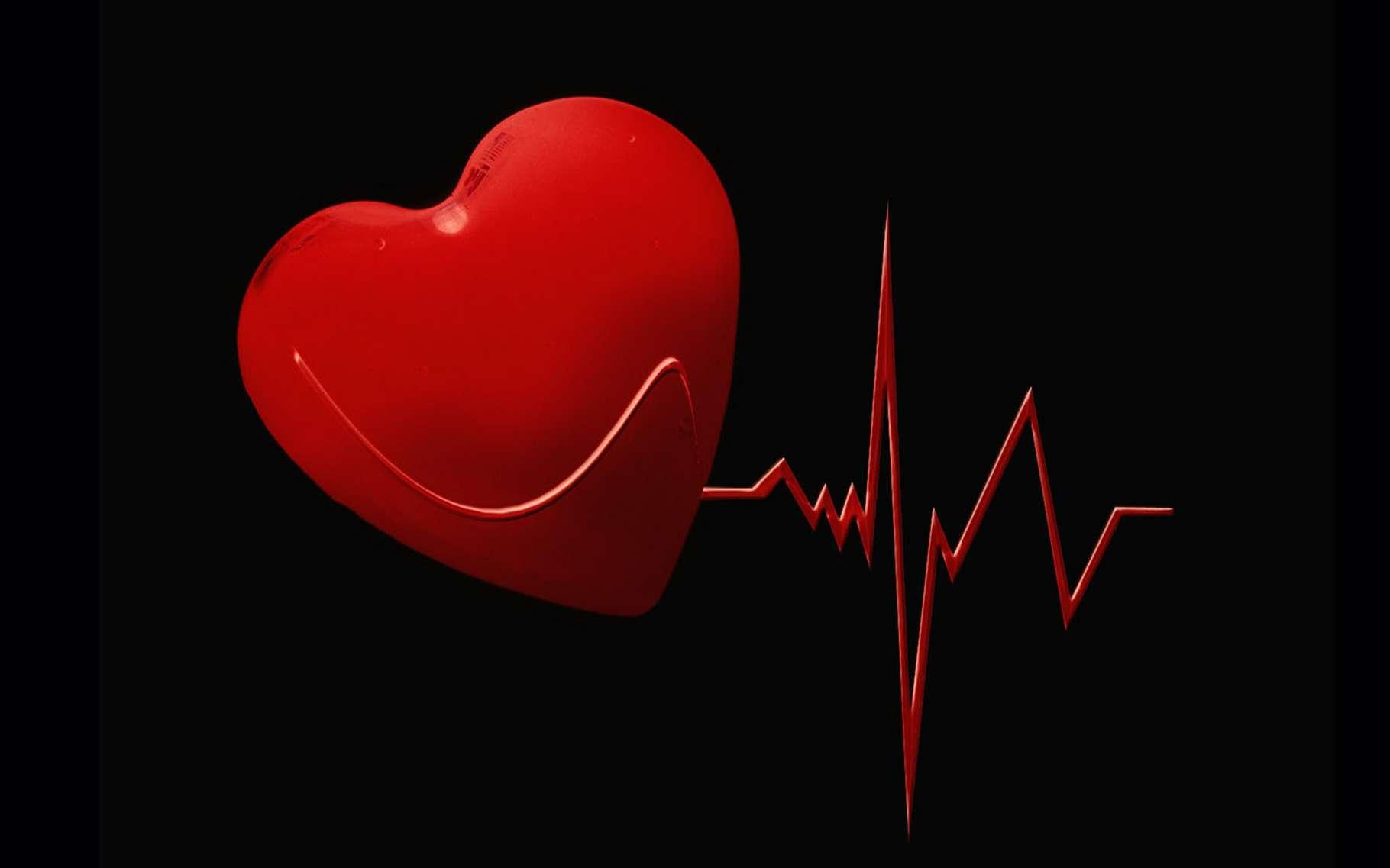 Automesure de la tension artérielle - Dossier