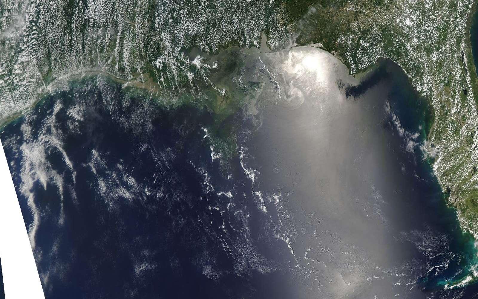 La marée noire repérée le 12 juin par le satellite Aqua, de la Nasa, et son instrument Modis (Moderate Resolution Imaging Spectroradiometer). L'image montre la partie nord-est du golfe du Mexique. La Floride est à droite, avec, en bas, l'archipel des Keys. On distingue le pétrole sur les côtes nord-ouest de la Floride et, à gauche, sur celles de l'Alabama. © Nasa