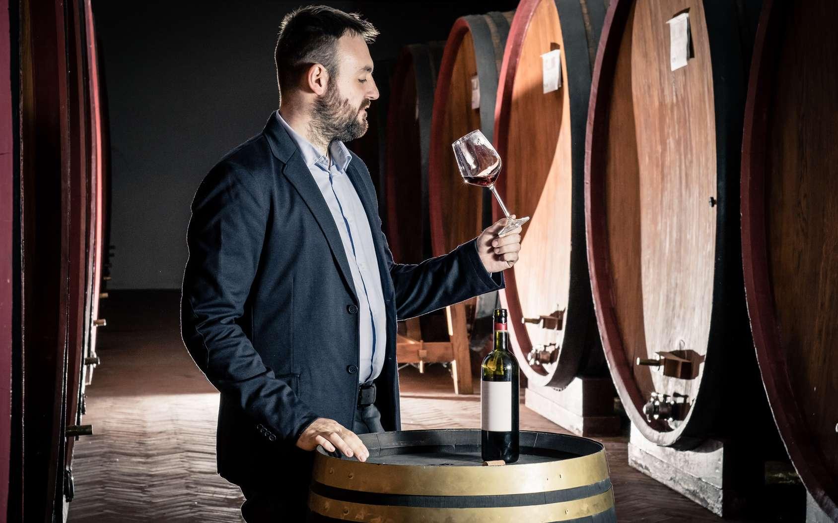 L'œnologue goûte régulièrement les vins afin de déterminer si des modifications sont à apporter au cours de sa vinification en fût. © Giorgio Pulcini, Fotolia