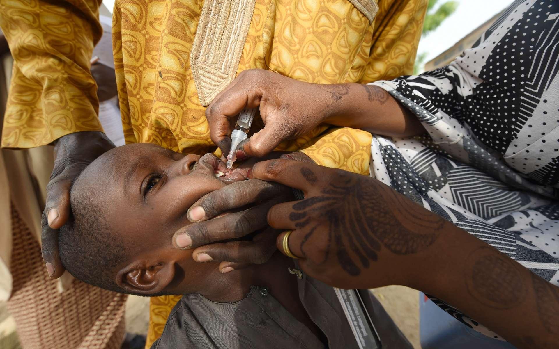 La polio est officiellement éradiquée du continent africain, selon l'OMS. © Pius Utomi Ekpei, AFP